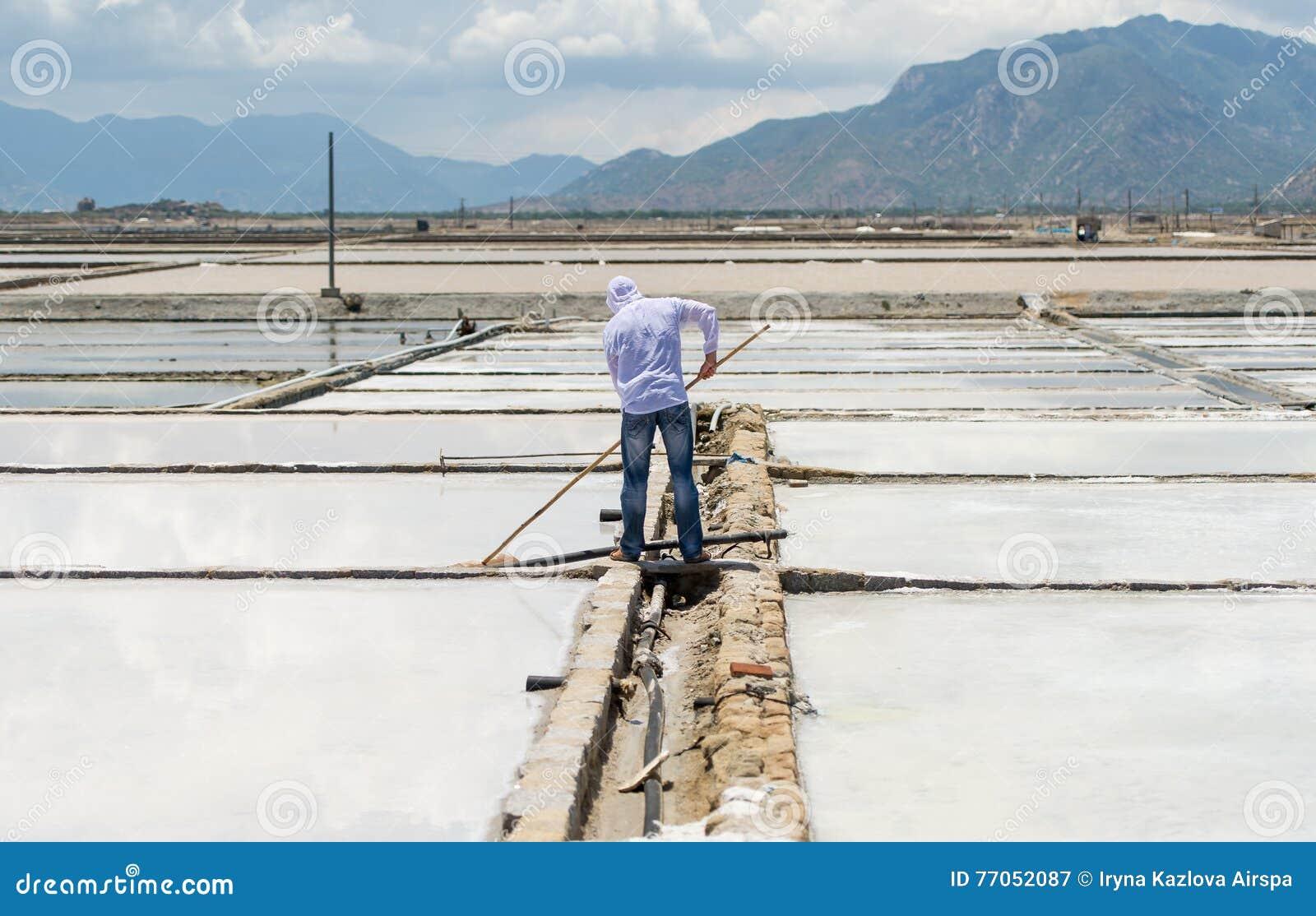 O trabalhador com a ferramenta trabalha no campo de sal