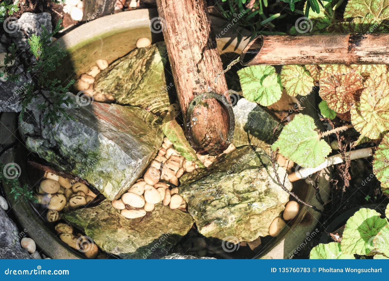 O tubo de bambu tem a água que corre através do dissipador