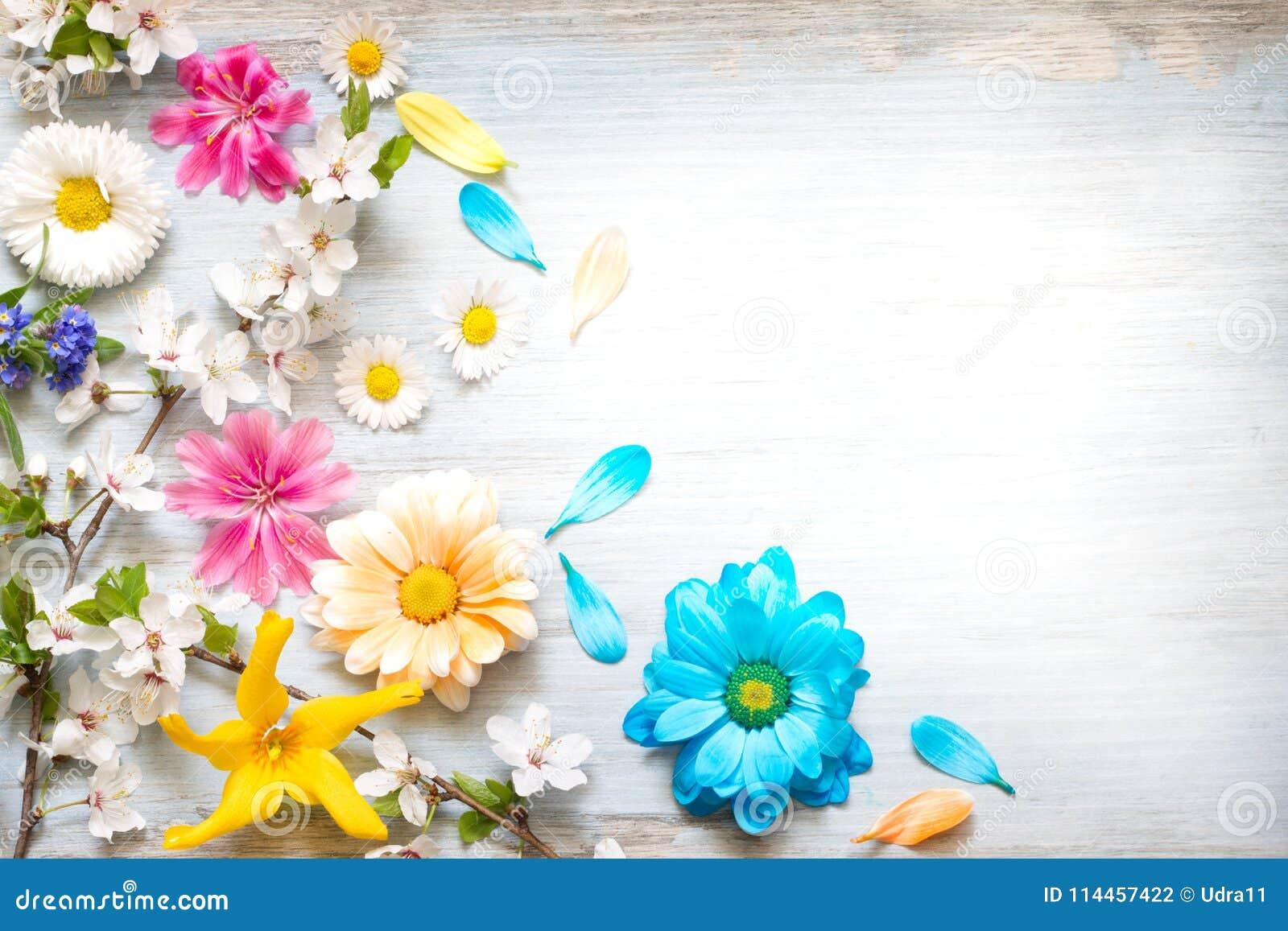 O verão da mola floresce no fundo floral do sumário retro de madeira das pranchas
