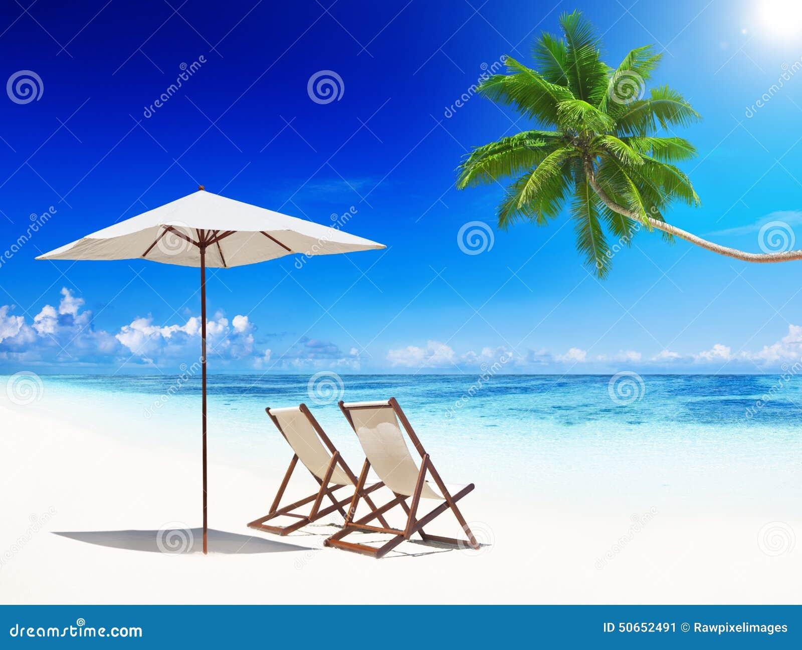 O verão tropical da praia das cadeiras de plataforma relaxa o conceito das férias