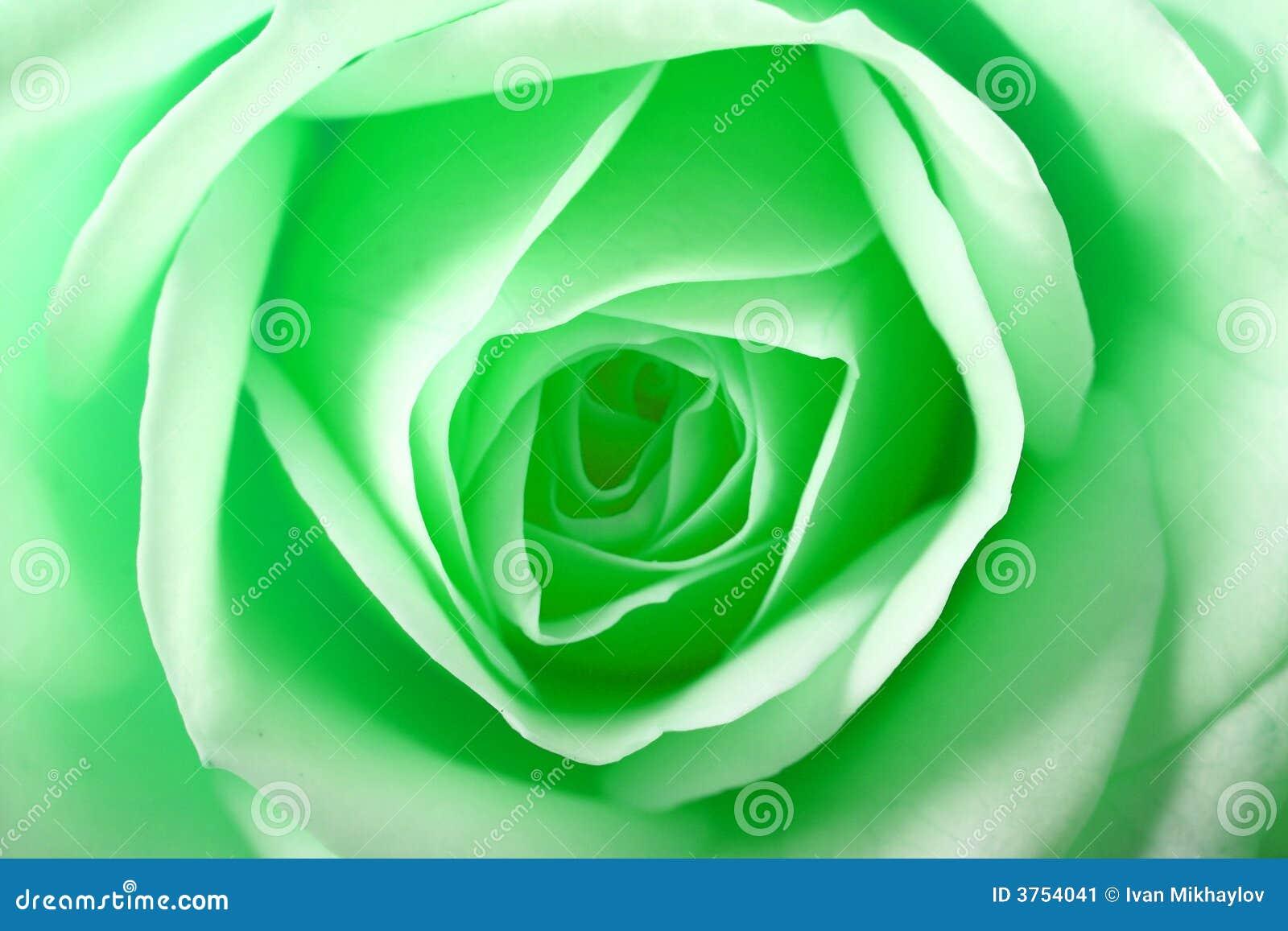 O verde levantou-se