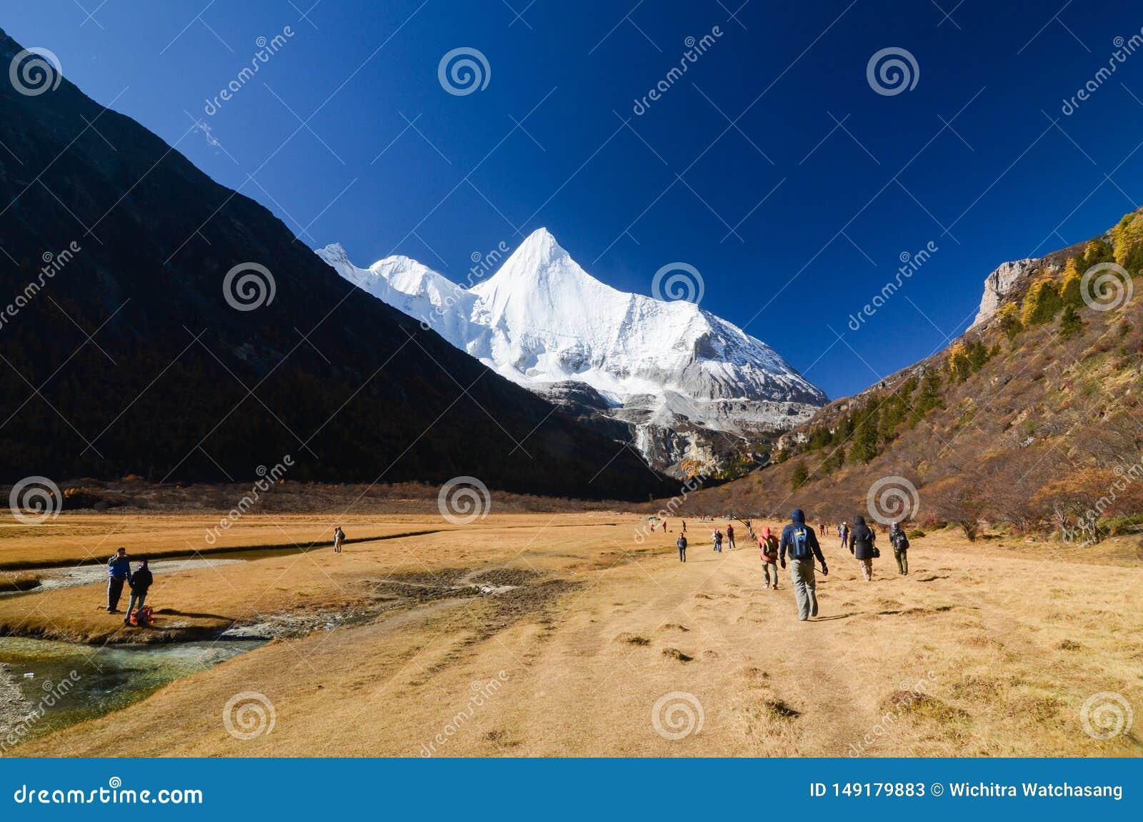 O viajante aprecia trekking no lanscape bonito na floresta do outono e na montanha da neve na reserva natural de Yading