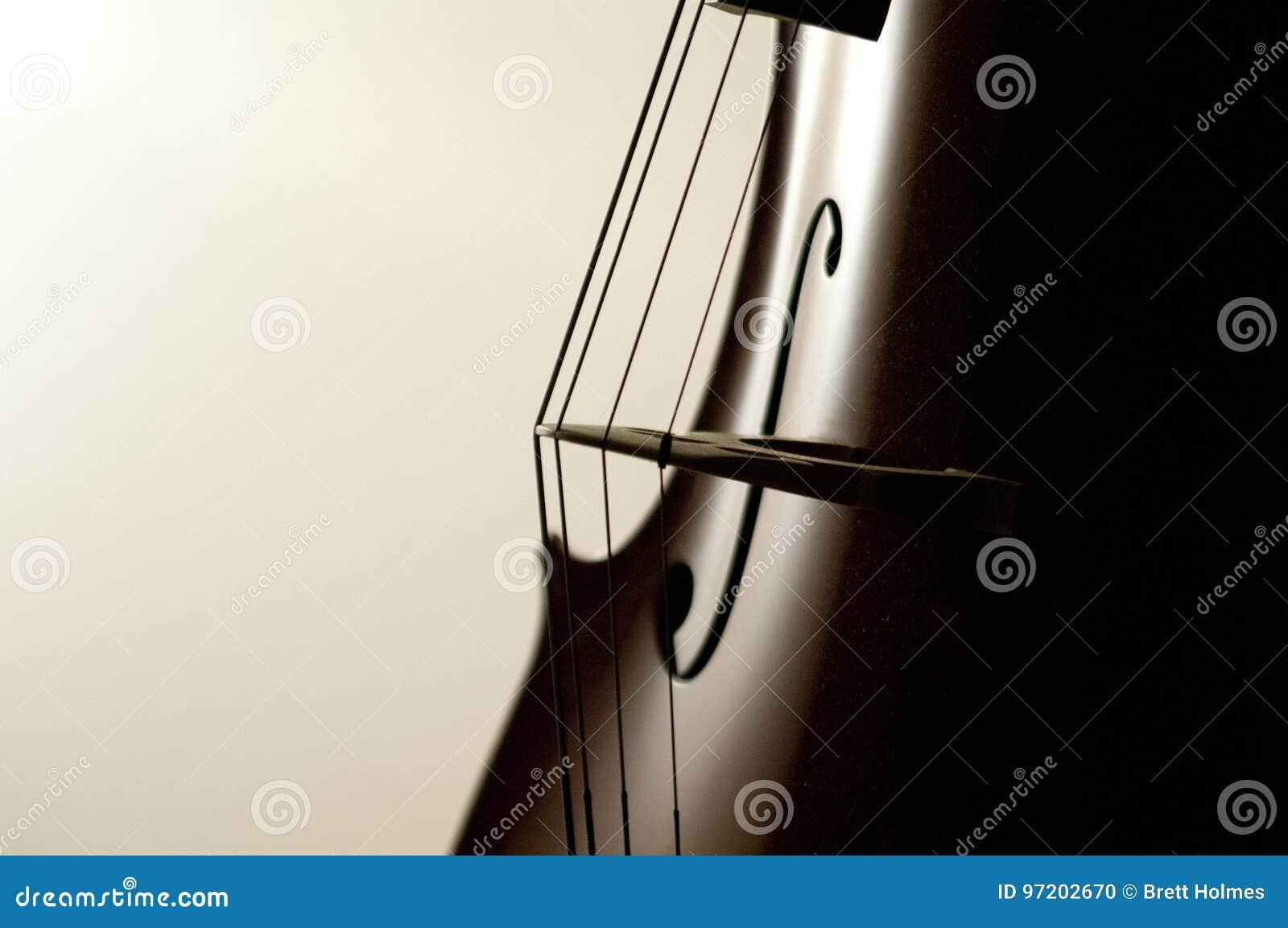 O violoncelo amarra o close-up