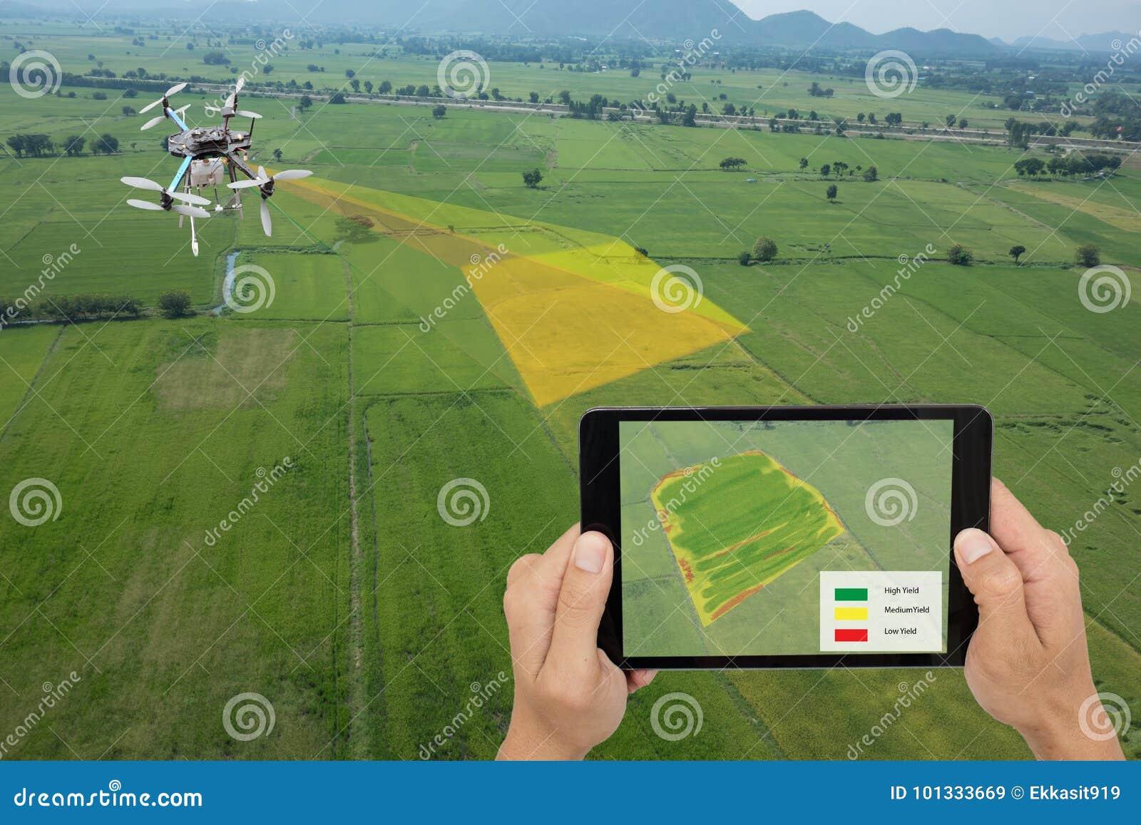 O zangão para a agricultura, uso do zangão para vários campos gosta da análise da pesquisa, segurança, salvamento, tecnologia da