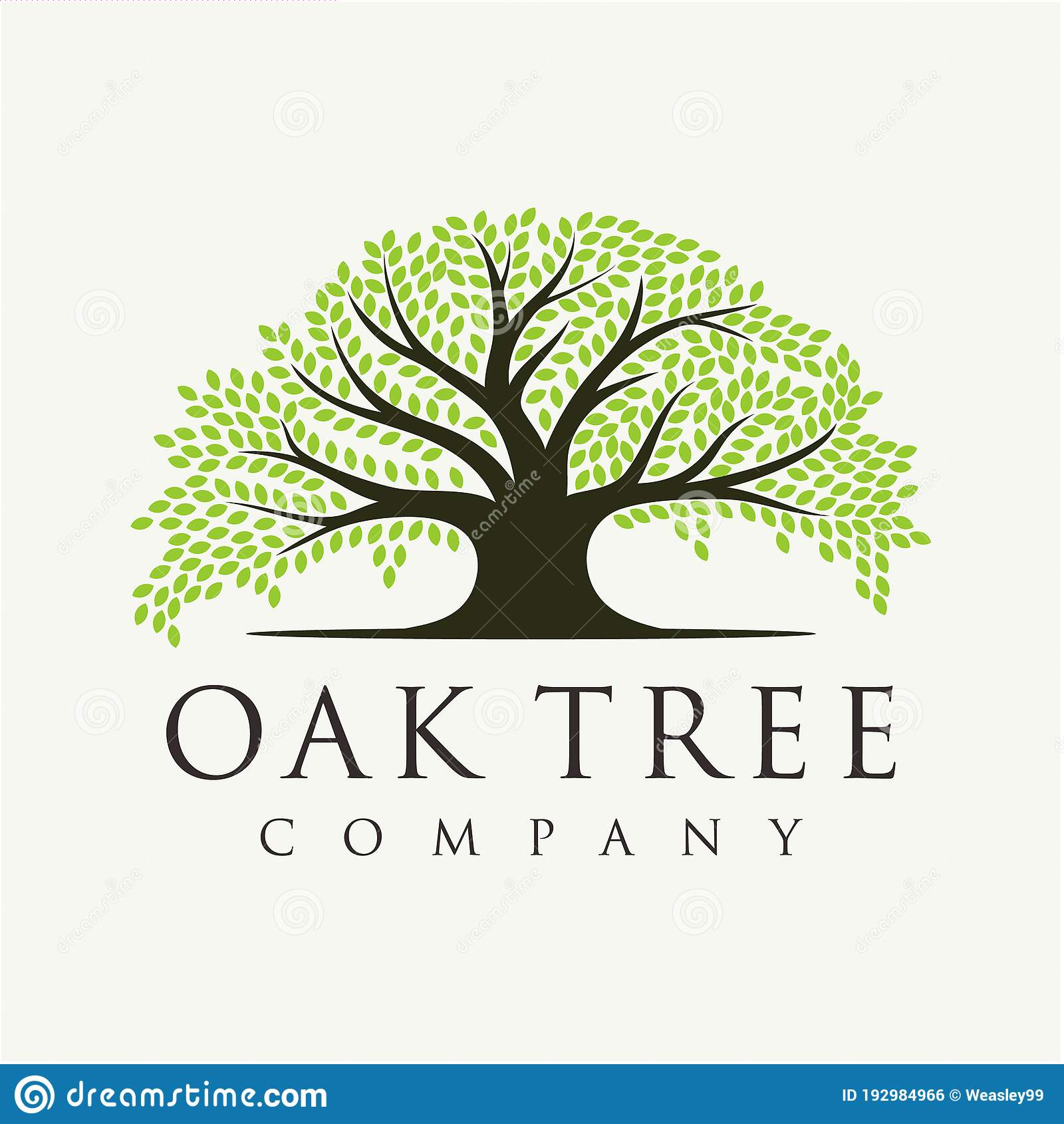Banyan Tree Logo Stock Illustrations 210 Banyan Tree Logo Stock Illustrations Vectors Clipart Dreamstime