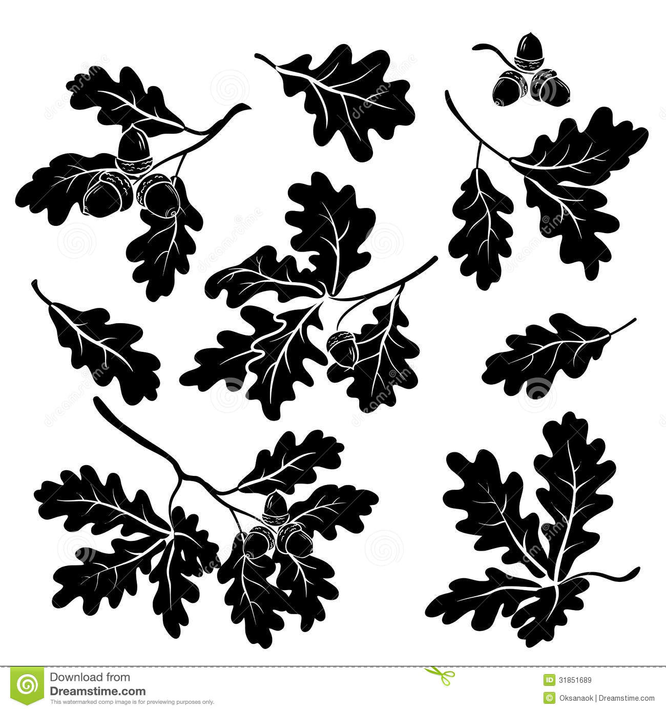 Oak Branches With Acorns, Silhouettes Royalty Free Stock Images ...