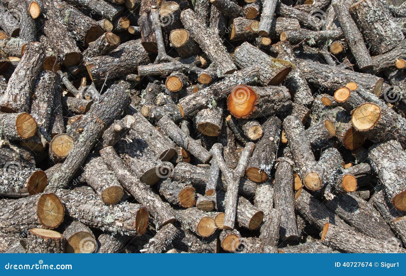 Oak firewood cut stock photo image