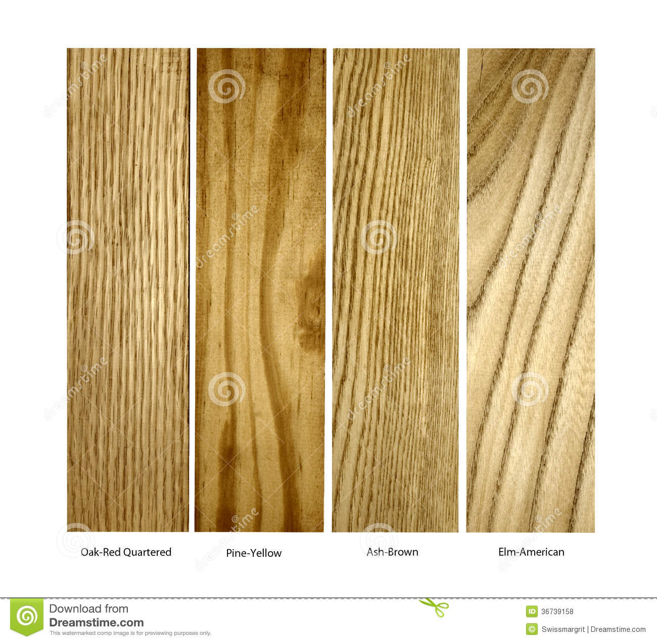 Oak Pine Ash Elm Real Wood Samples Isolated Stock Photo