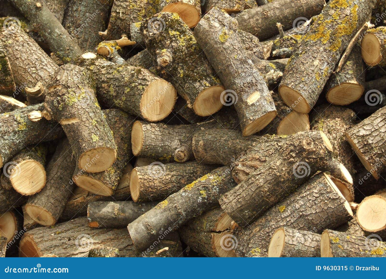 Oak Wood Logs ~ Oak round logs royalty free stock photo image
