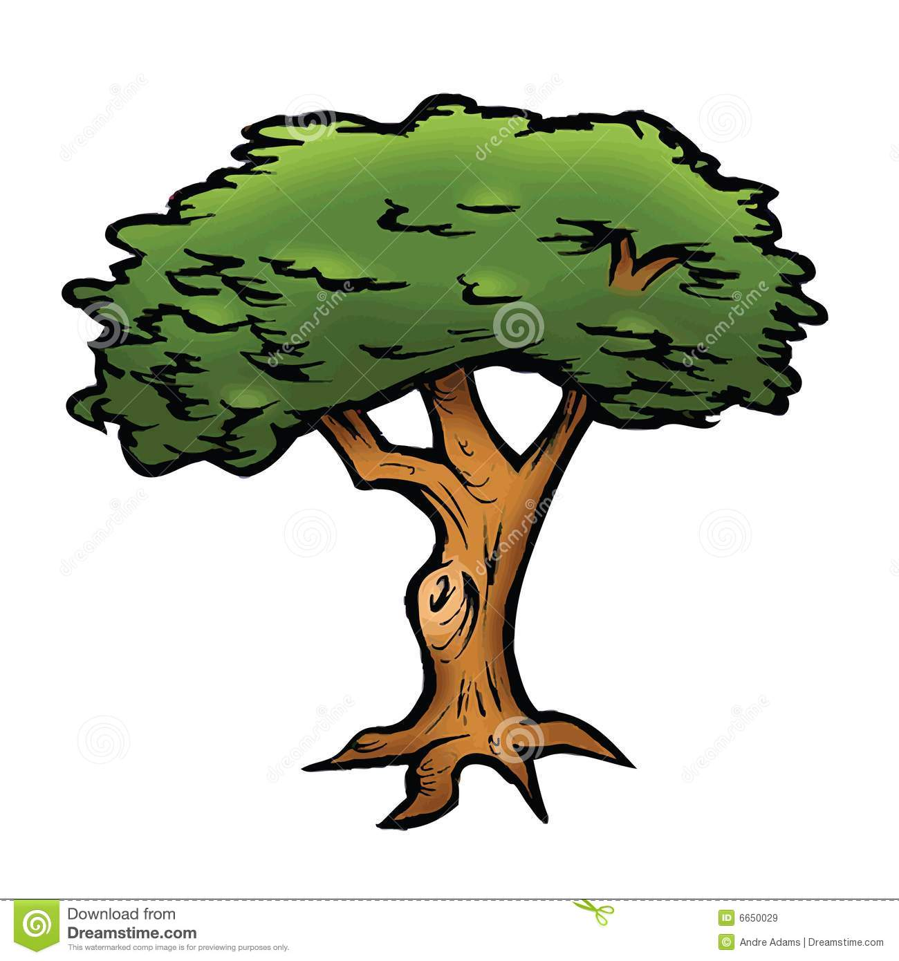 Oak Tree Cartoon Pictures Images amp Photos  Photobucket