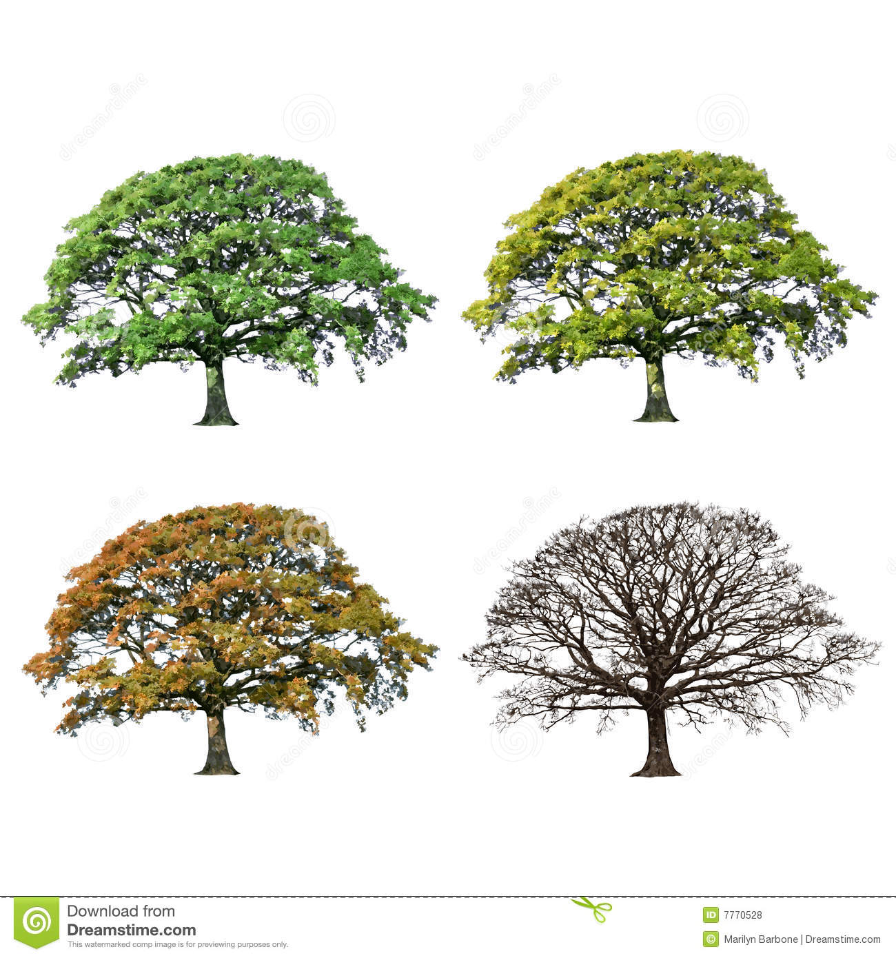 Abstract Four Seasons Stock Illustrations – 20,20 Abstract Four ...