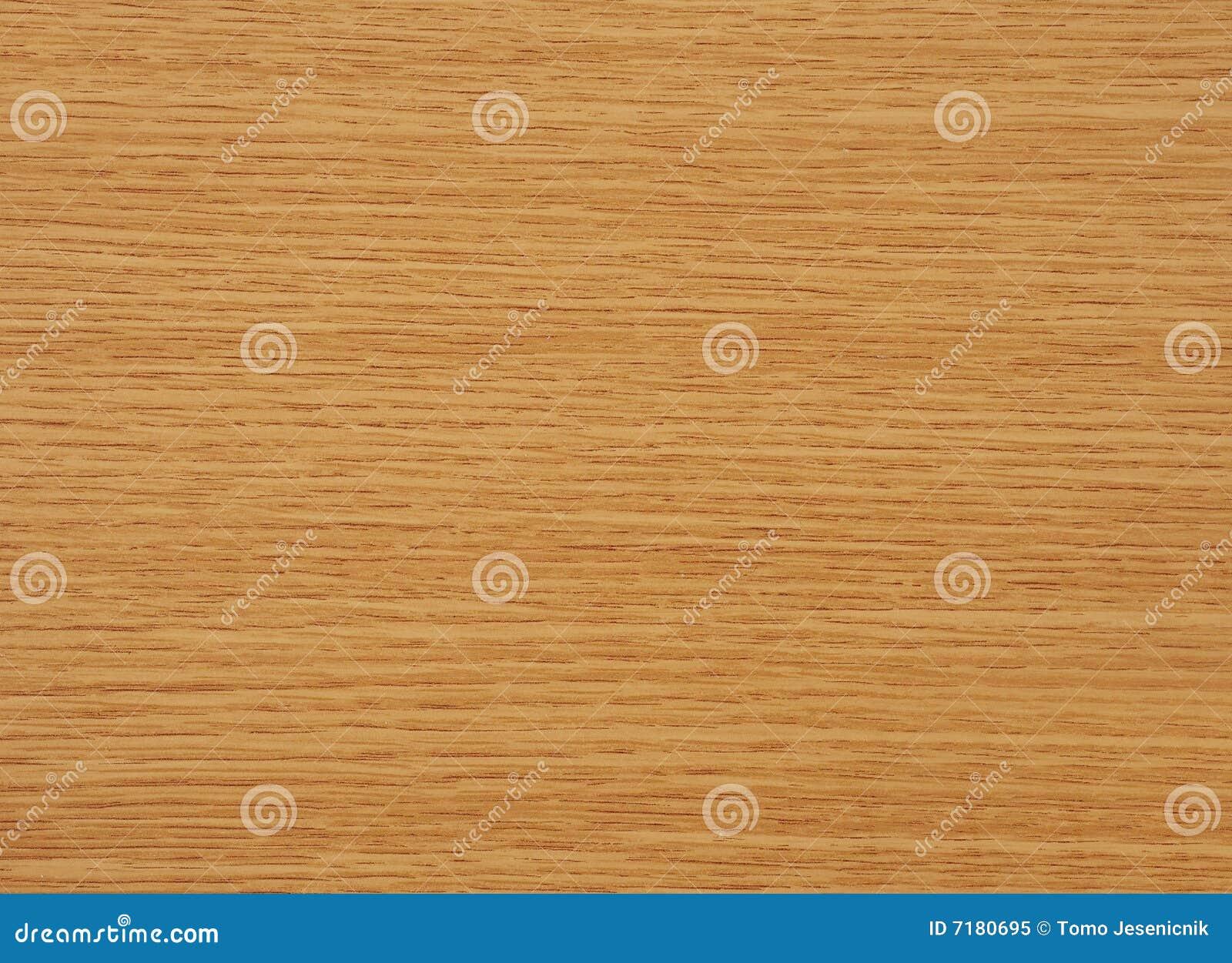 Oak tree wood royalty free stock photo image