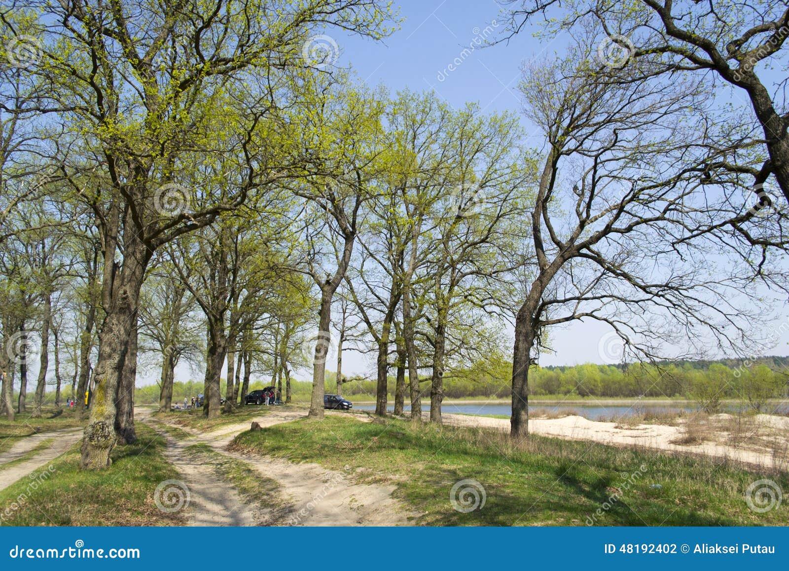 Rest on the river Bityug in the Voronezh region 92