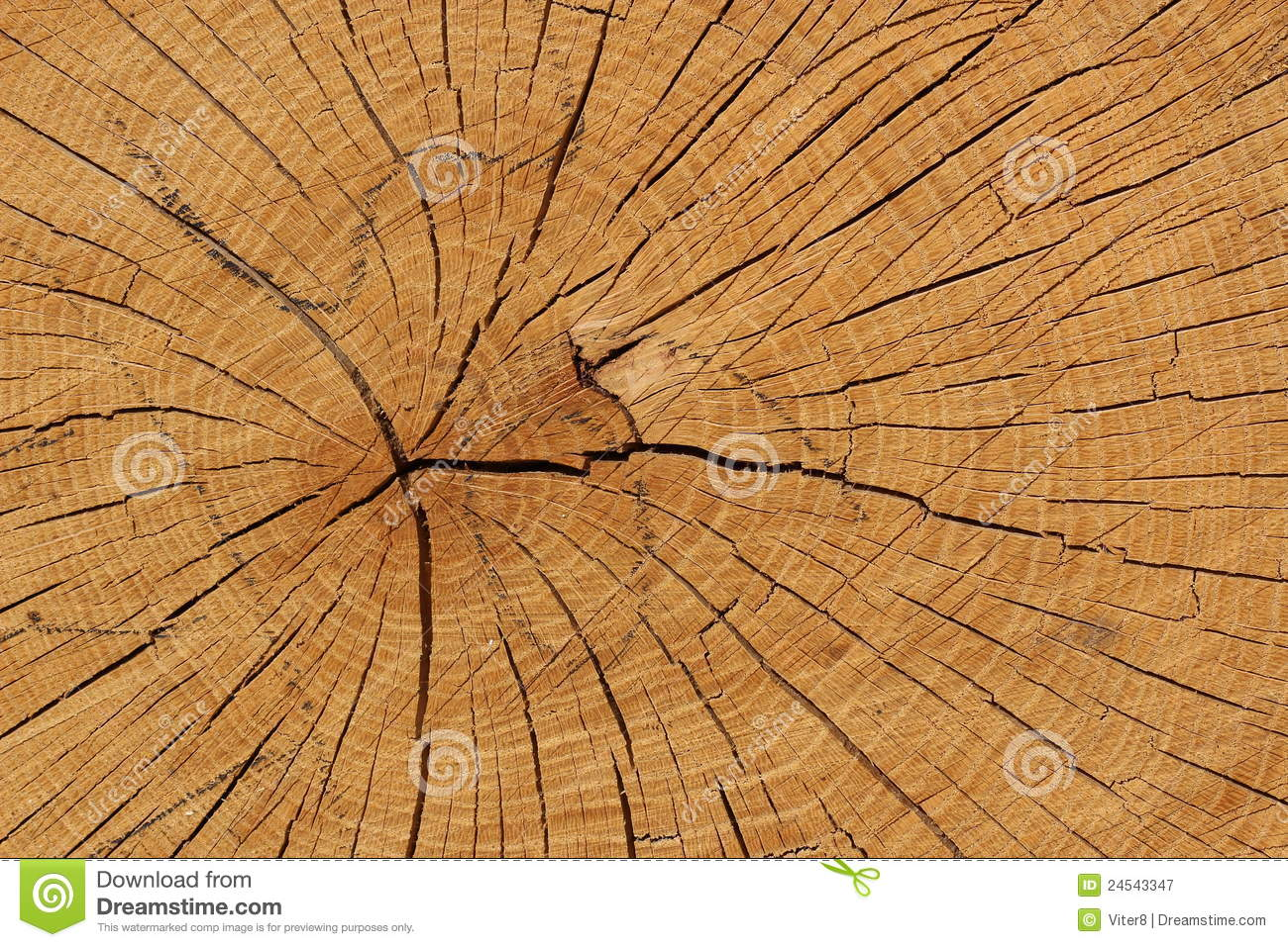 Oak Wood Texture Royalty Free Stock Photography - Image: 24543347