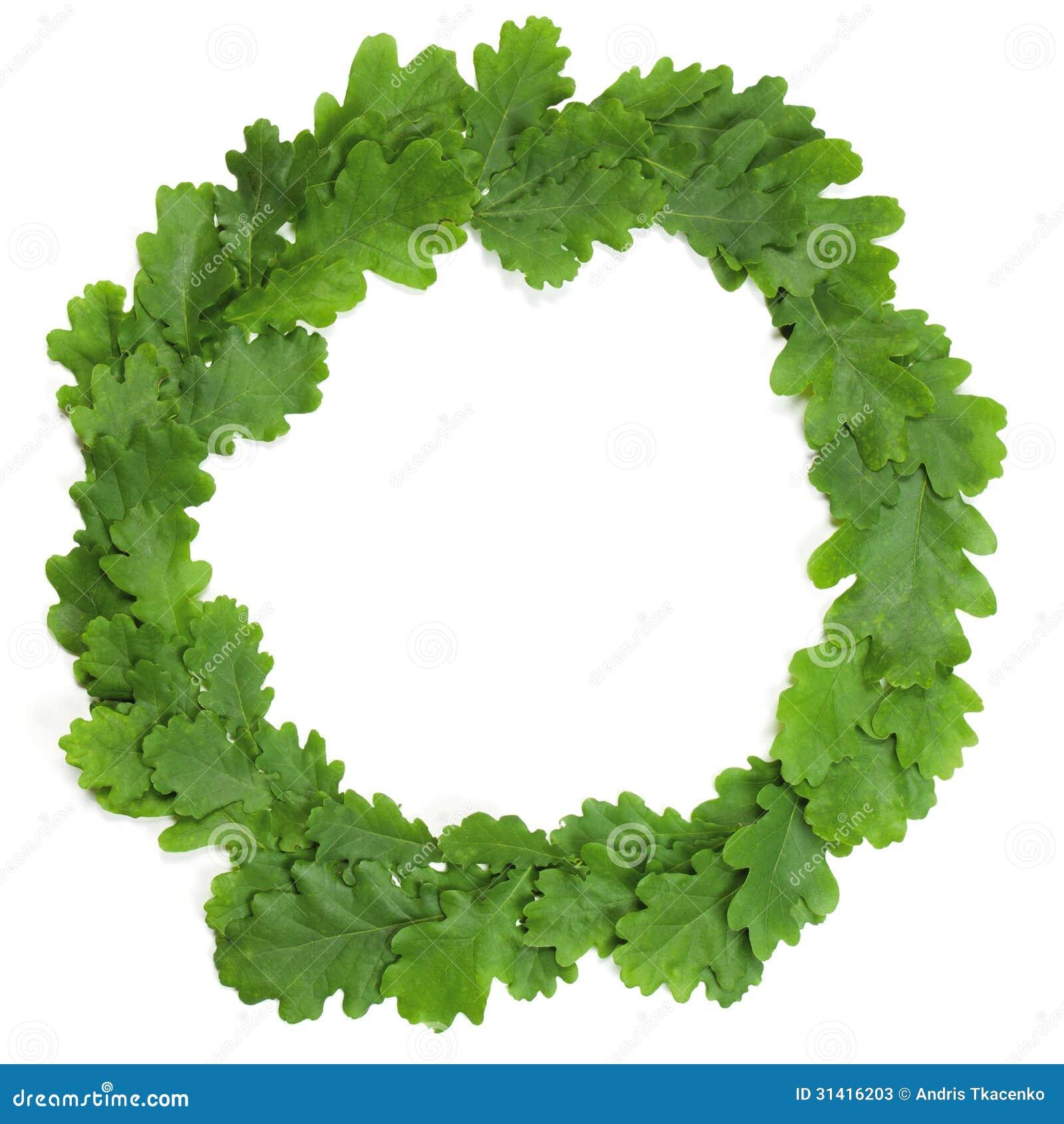 Oak wreath stock image image of crown object leaf 31416203 oak wreath buycottarizona Image collections