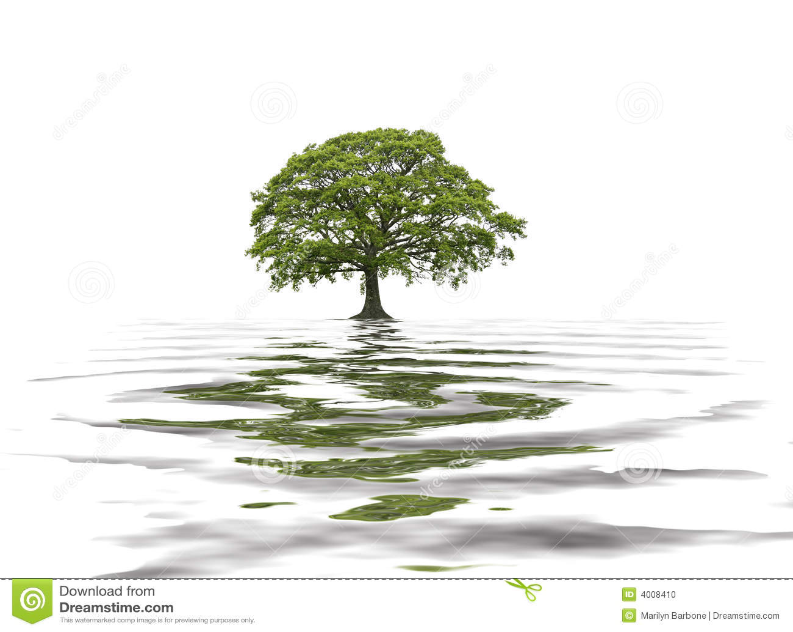 Oaksommartree