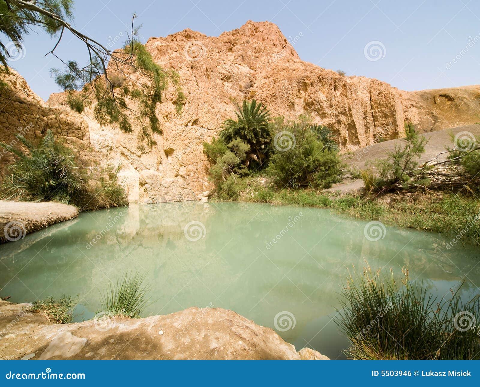 Oase op woestijn 3