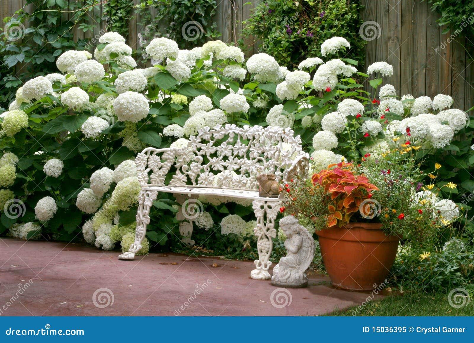 Oasis Del Jardin Imagen De Archivo Imagen De Visualizacion 15036395