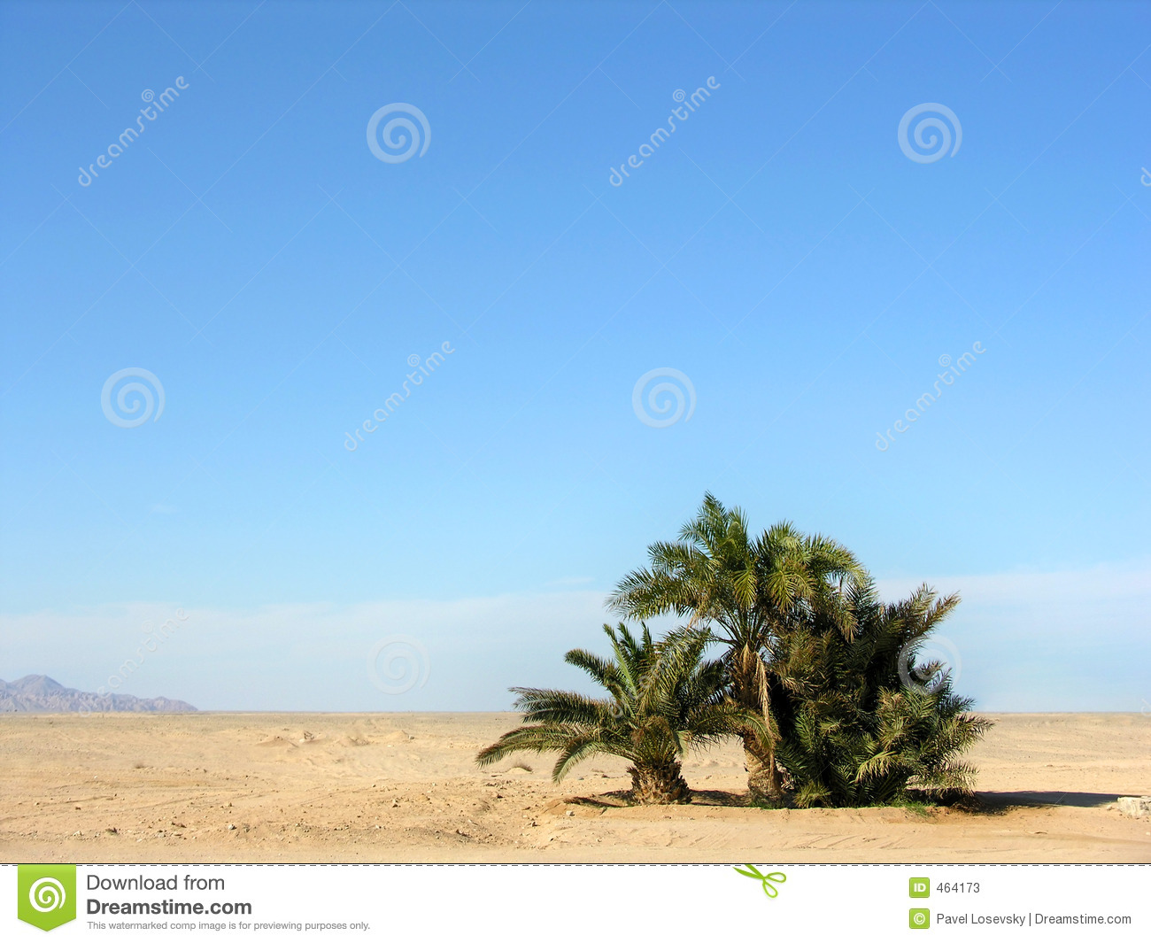 Download Oasis in desert stock image. Image of dune, isolated, distant - 464173