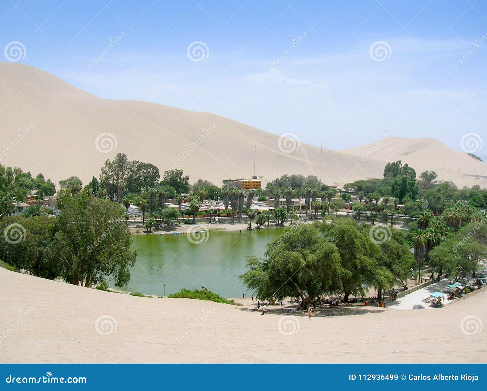 Oasis en el desierto de la laguna de Perú