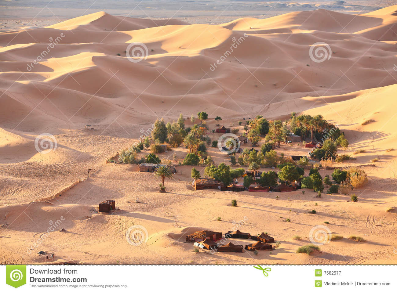 Oasis In Sahara Desert Royalty Free Stock Photography ...
