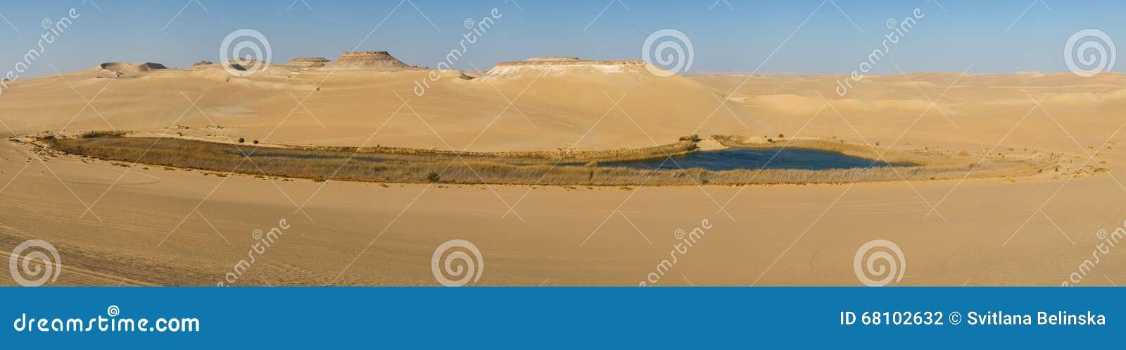 Oasis in Sahara desert in Egypt