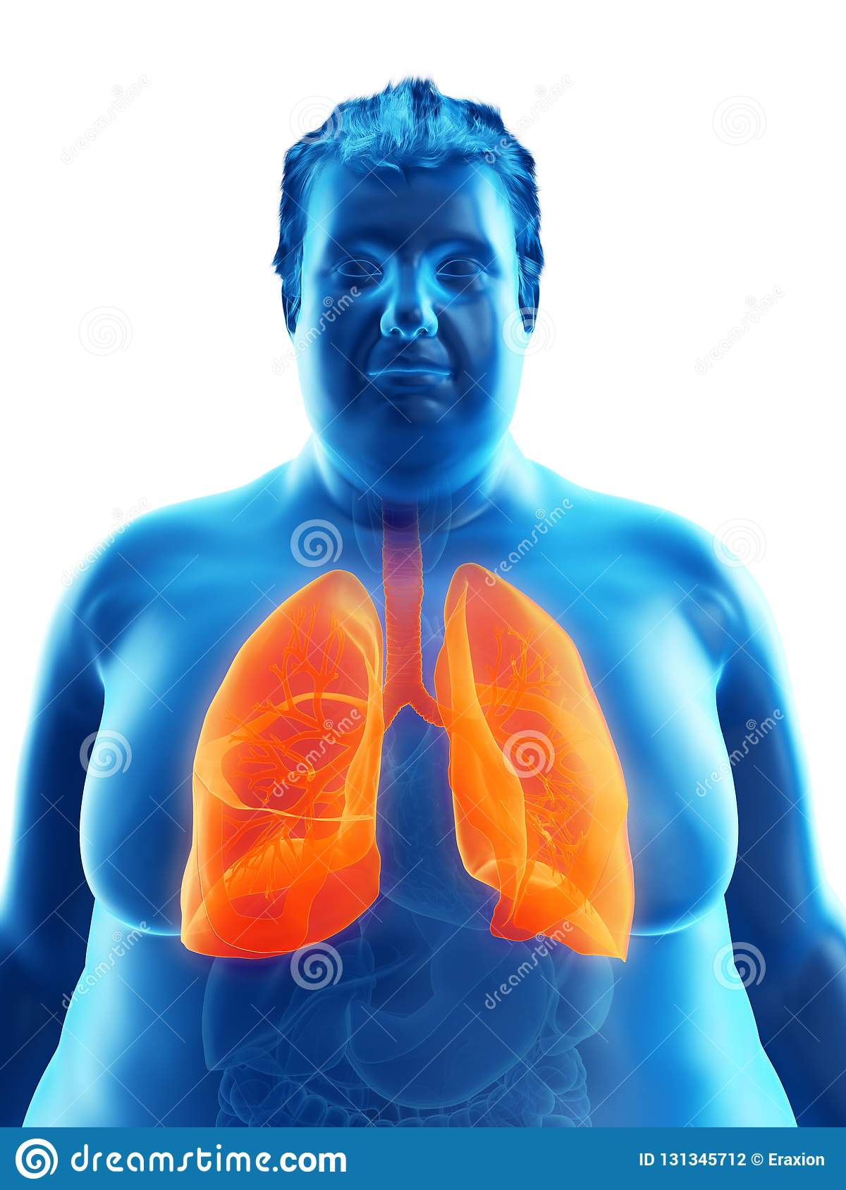 An obese mans lungs