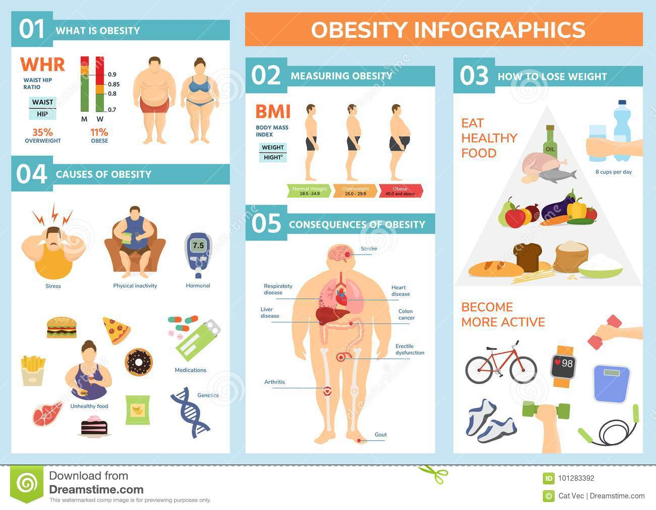 obesity weight loss and fat people health problems infographic