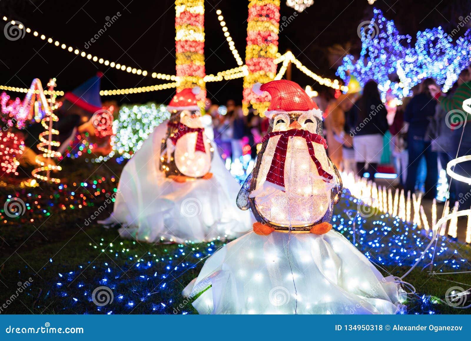 Objet exposé extérieur de lumières de Noël sous la forme de pingouins