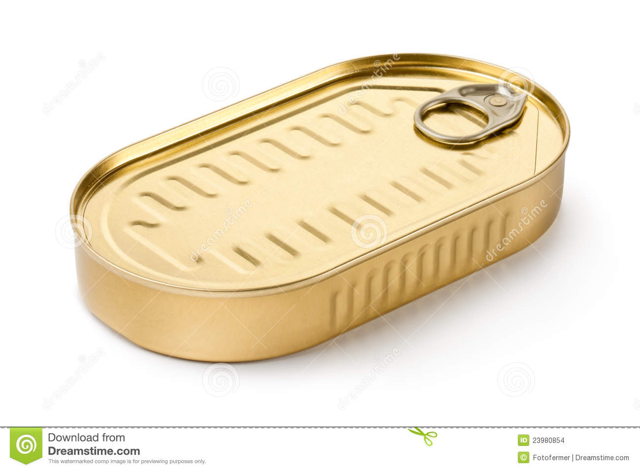 Oblong Can With Ring Pull Stock Images