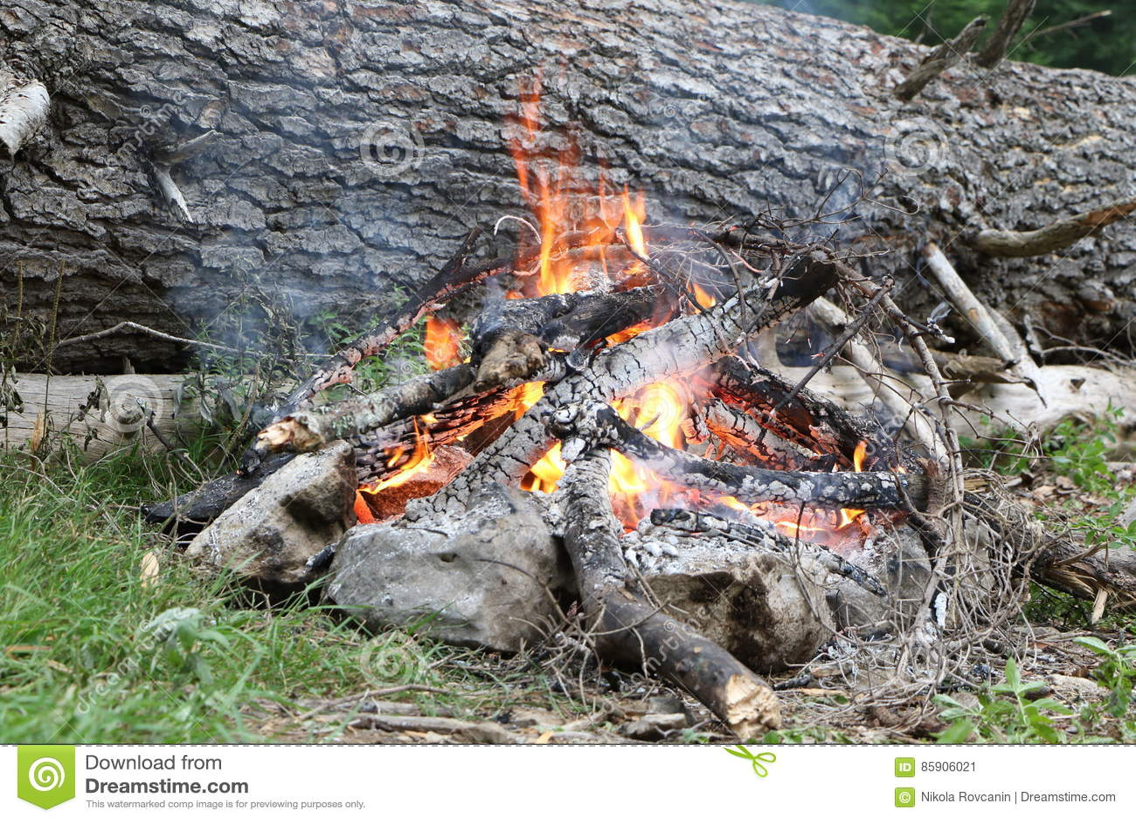 Obozowy ogień