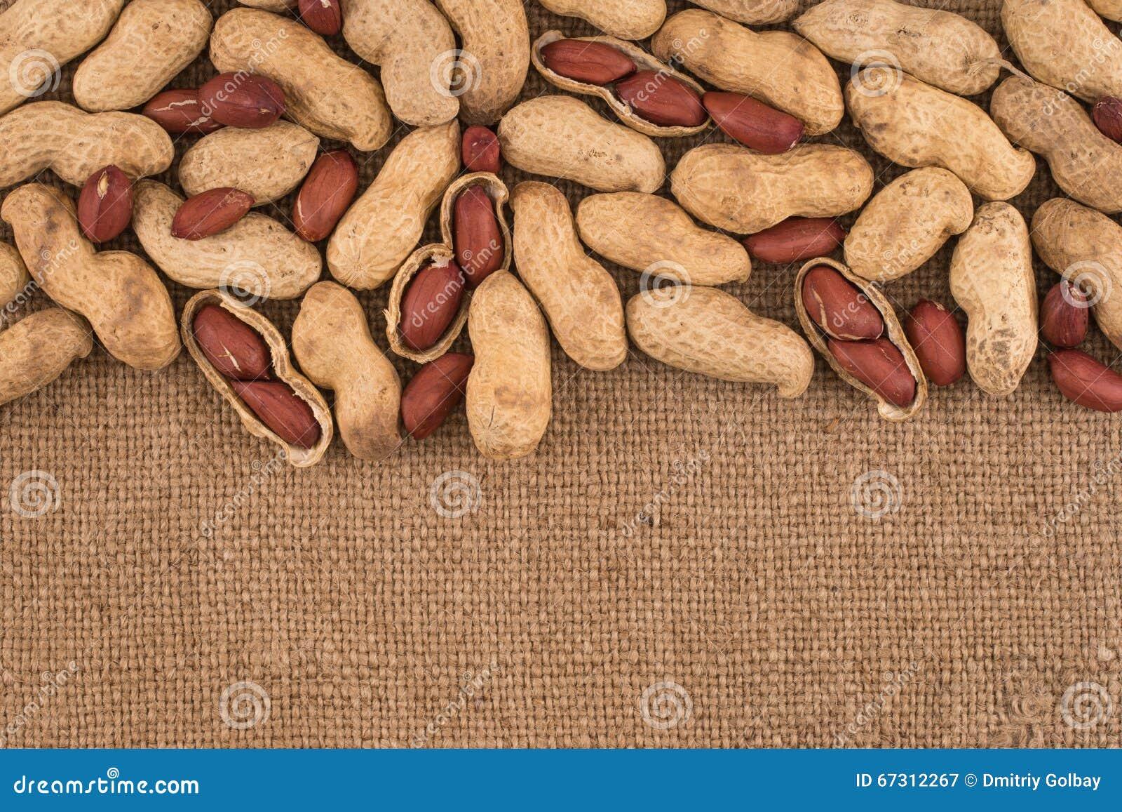 Obrany arachid na well arachidach
