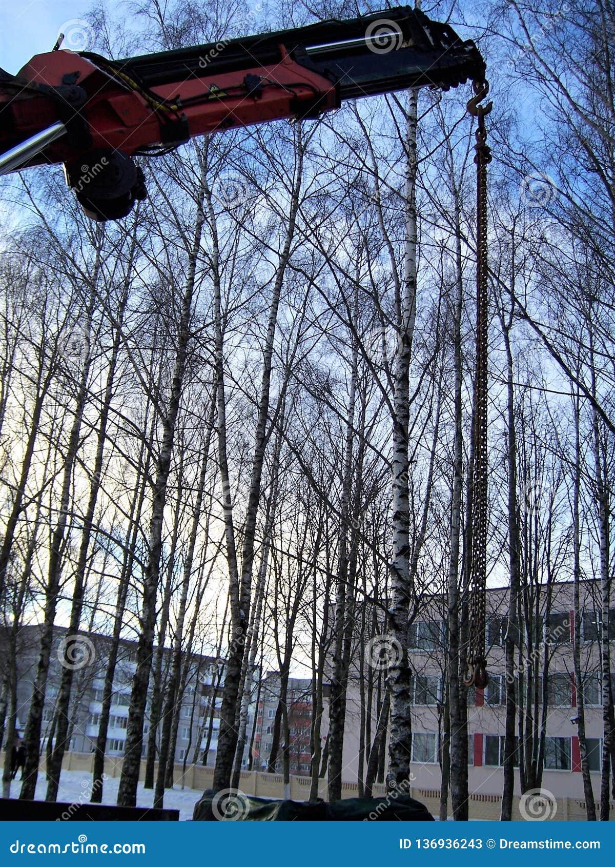 Obras, o guindaste delevantamento do automóvel, seta na perspectiva das árvores, inverno do guindaste do caminhão, a cidade,