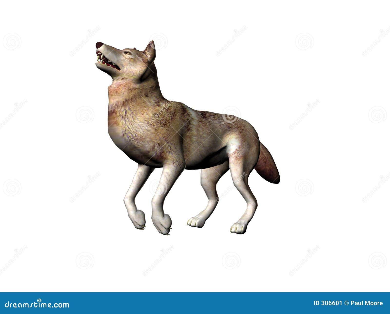 Obrazkowy wilk