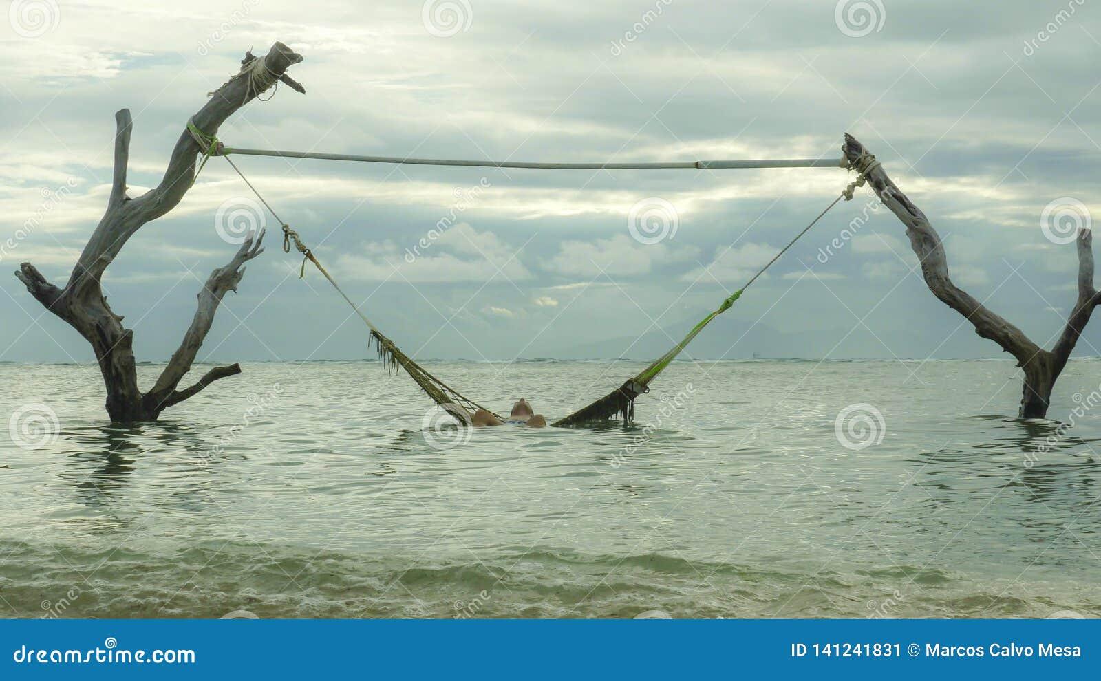 Obsługuje lying on the beach relaksującego i szczęśliwy w dennego hamaka zadziwiającym ustawianiu na drzewnych bagażnikach przy t