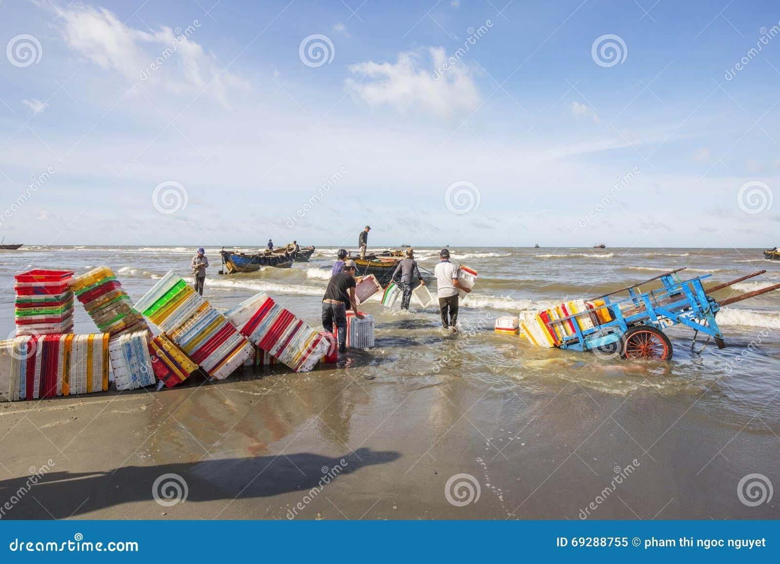 Obsługuje działanie na plażowym pobliskim Długim Hai rybim rynku