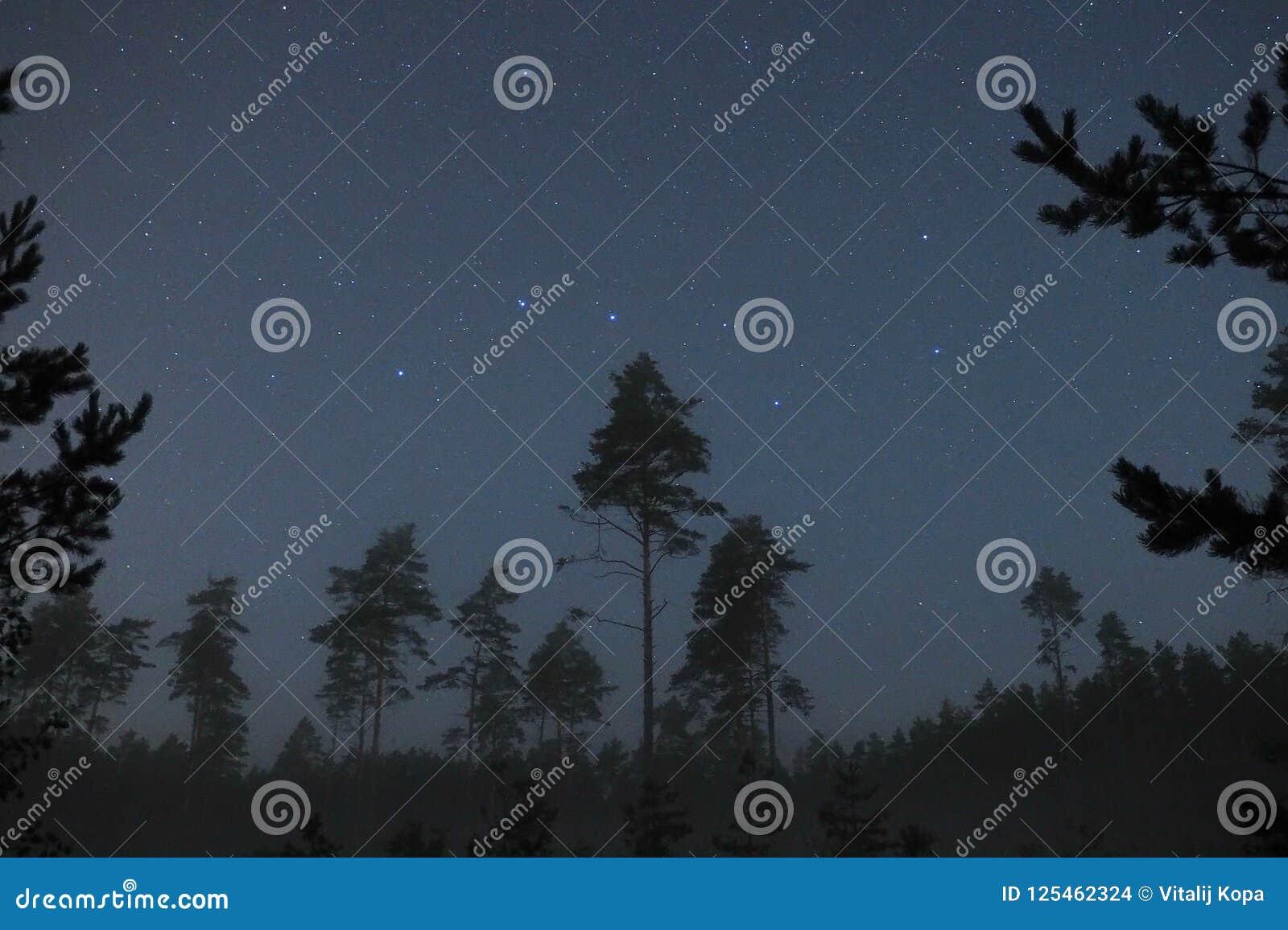 Observação da constelação das estrelas do céu noturno e do dipper grande