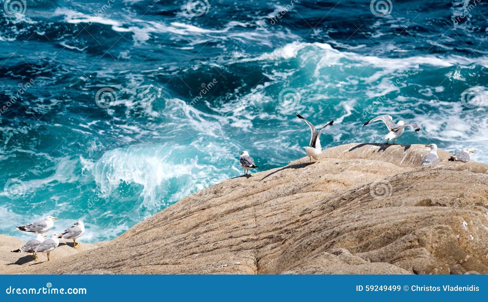 Observación de las ondas