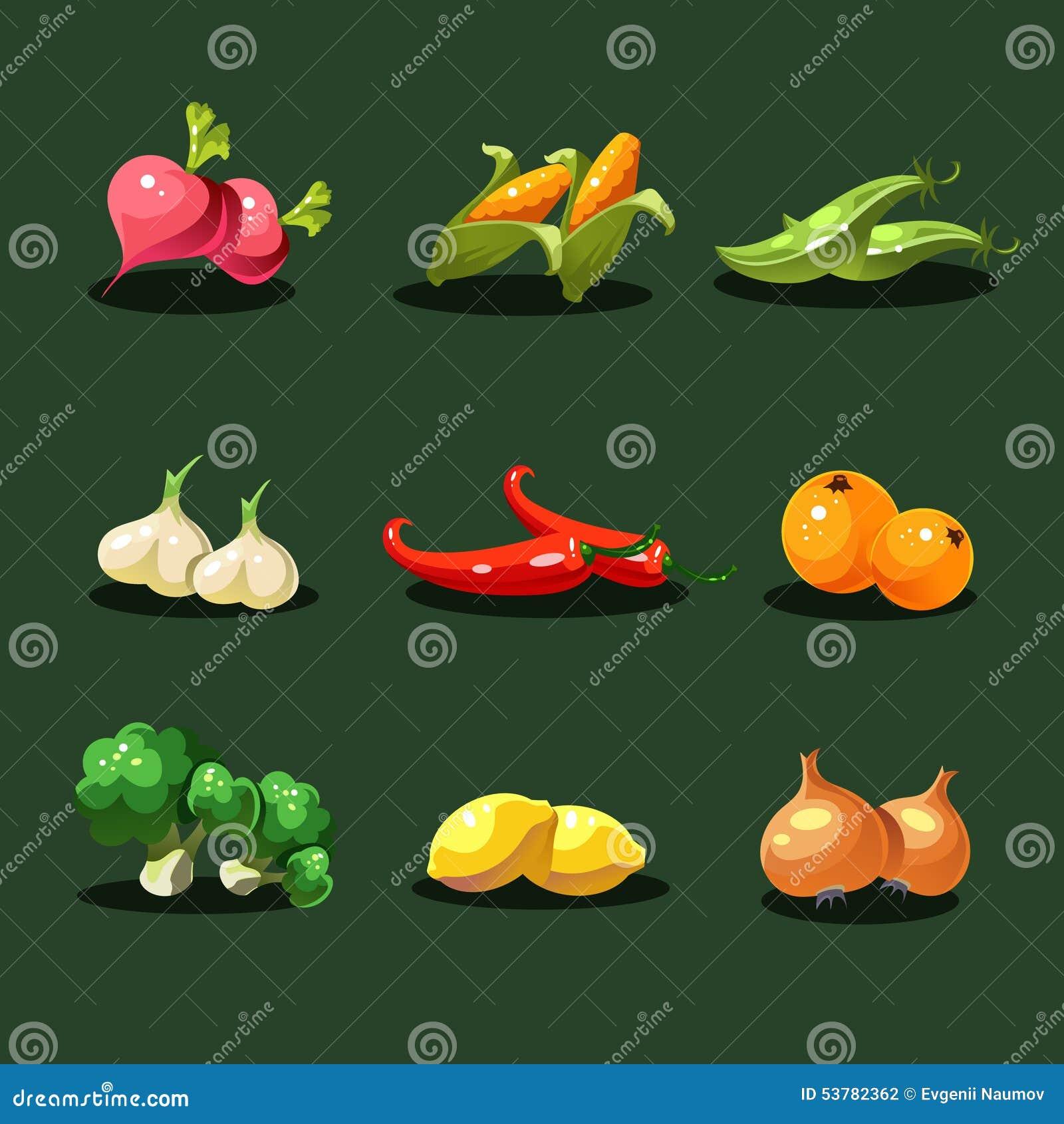 Obst und Gemüse Ikonen-Vektor des biologischen Lebensmittels