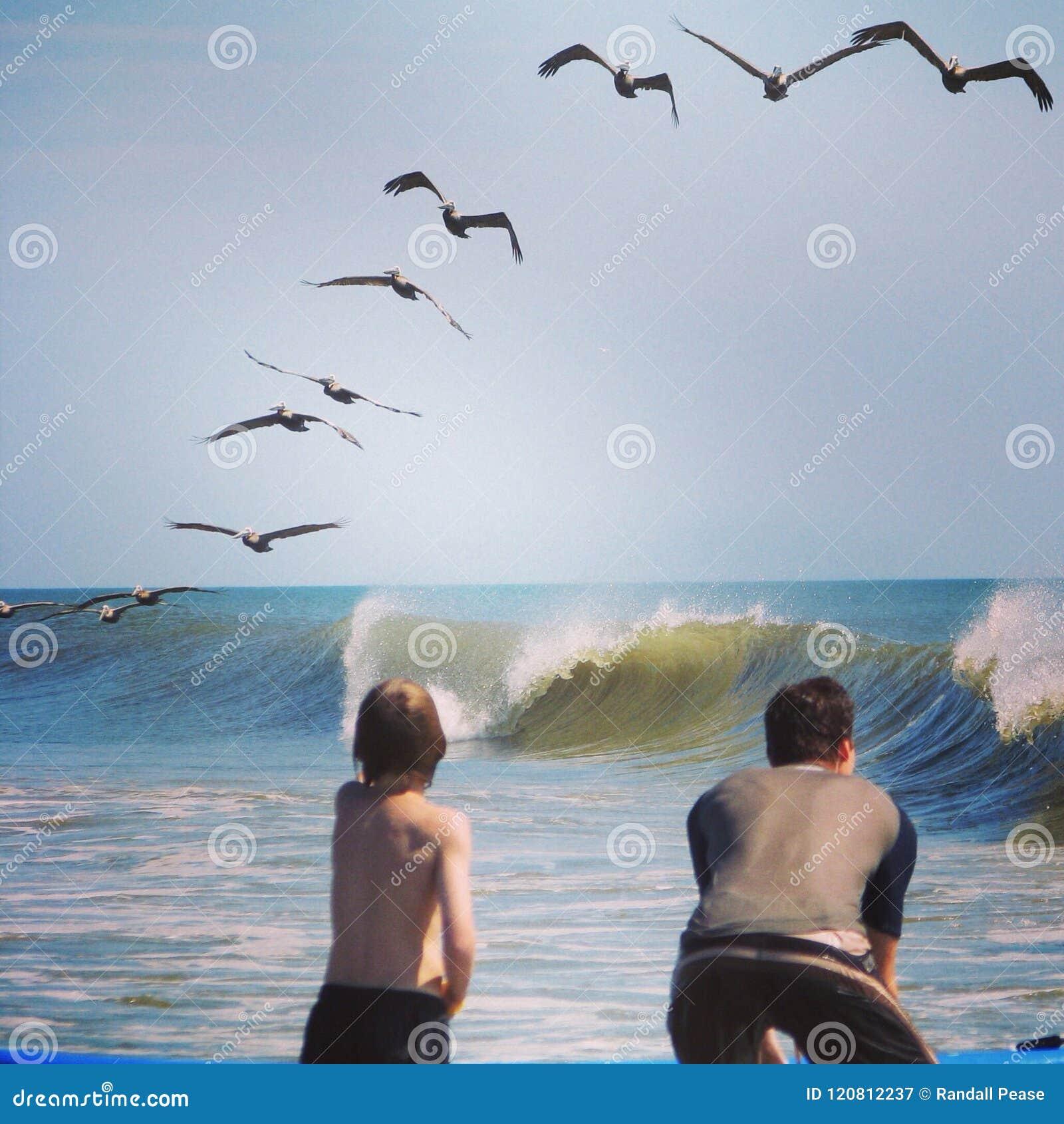 OBX en el océano