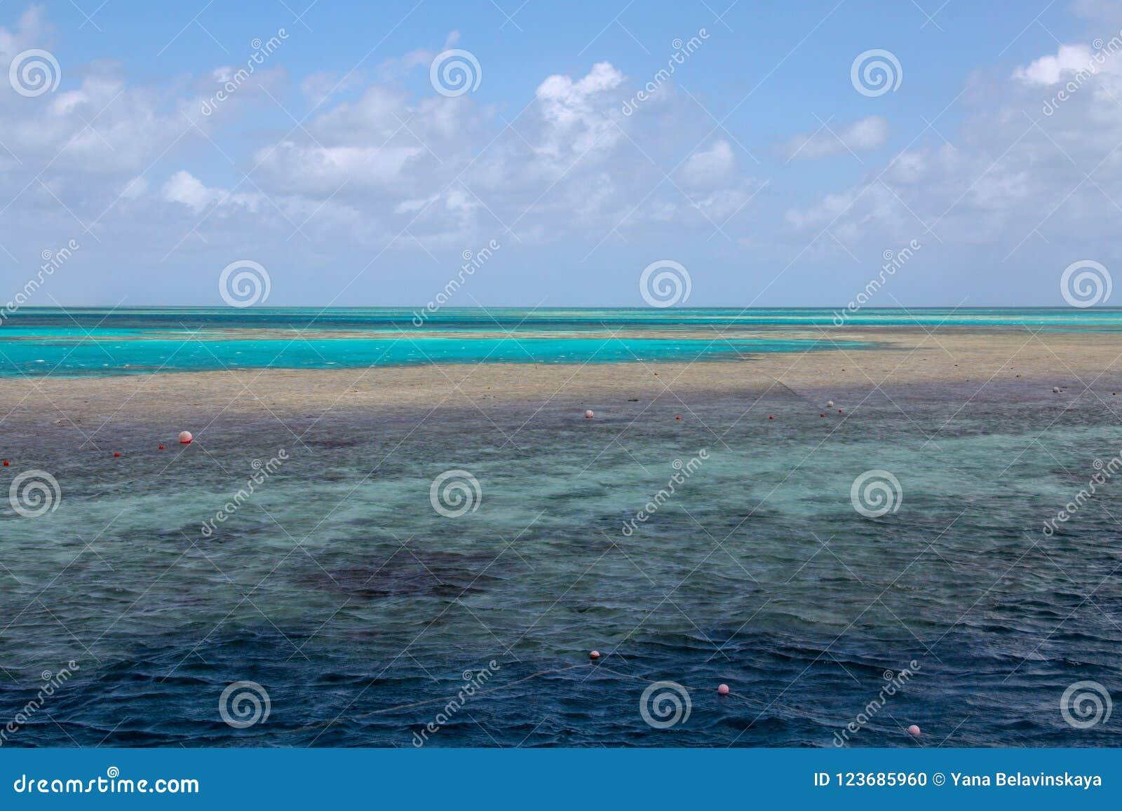 Océan bleu pittoresque sur la Grande barrière de corail