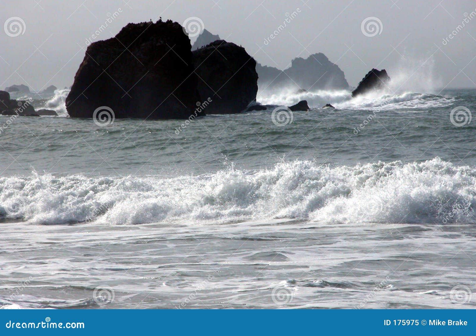 Océano blanco y negro