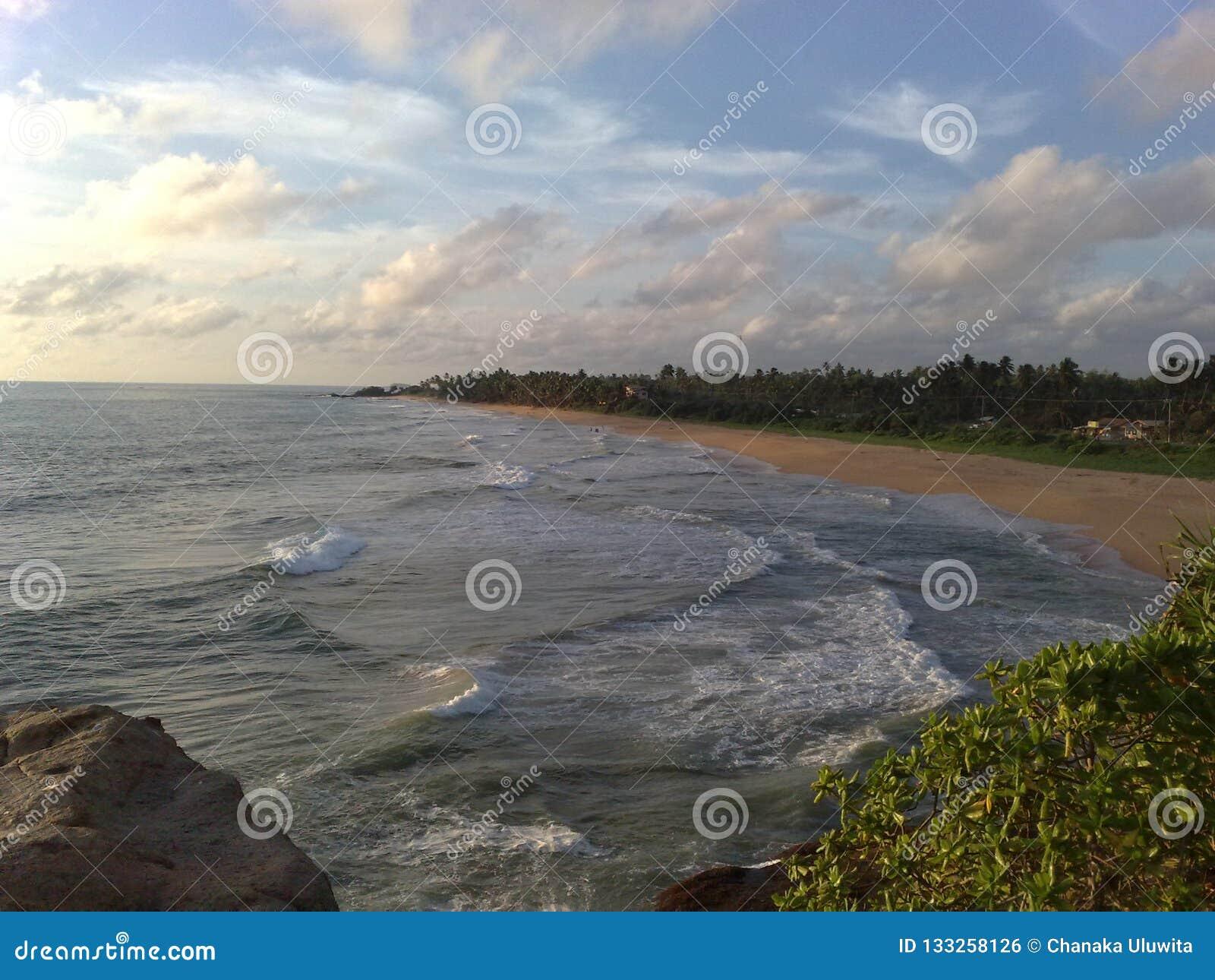 Océano en la tarde