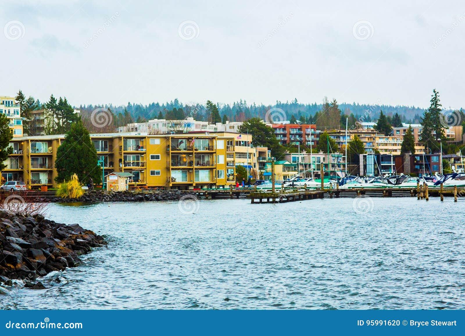 Océano Pacífico Mt de Puget Sound Seattle Washington State Pacific Northwest PNW Árboles de pino de Rainer Mountains Trees Evergr