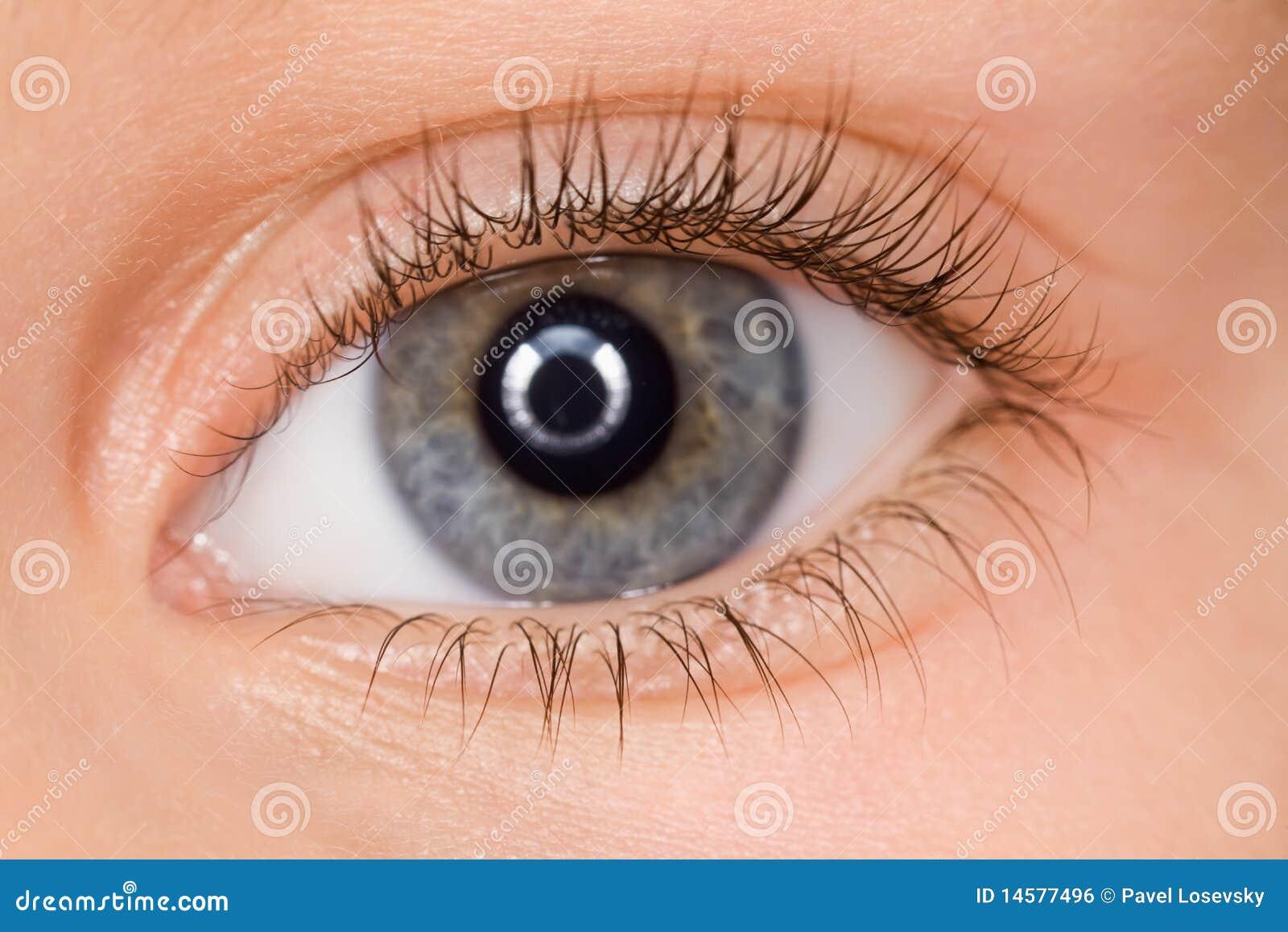 Da diritti: occhio azzurro di sinistra del bambino con i cigli lunghi