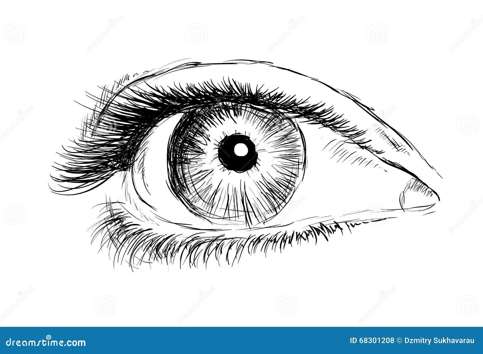 Famoso Occhio Del Disegno Della Mano Su Un Fondo Bianco Illustrazione di  UE34