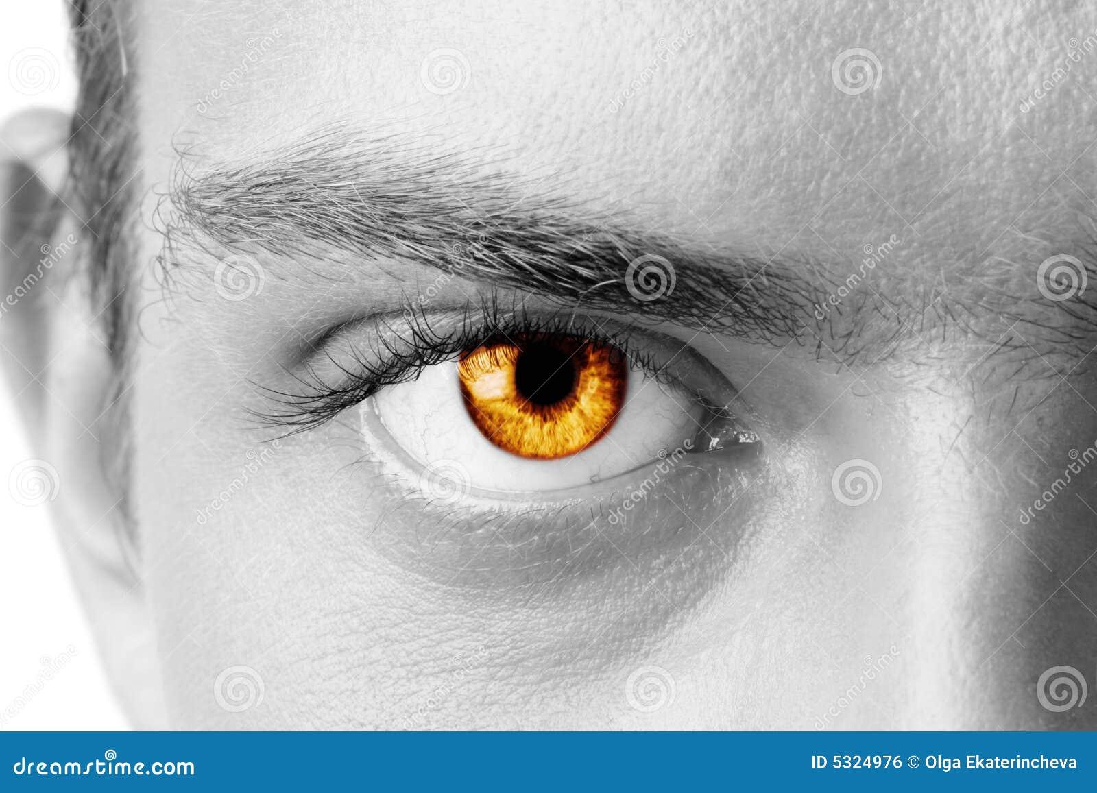 Download Occhio dell'uomo ambrato fotografia stock. Immagine di eyelashes - 5324976