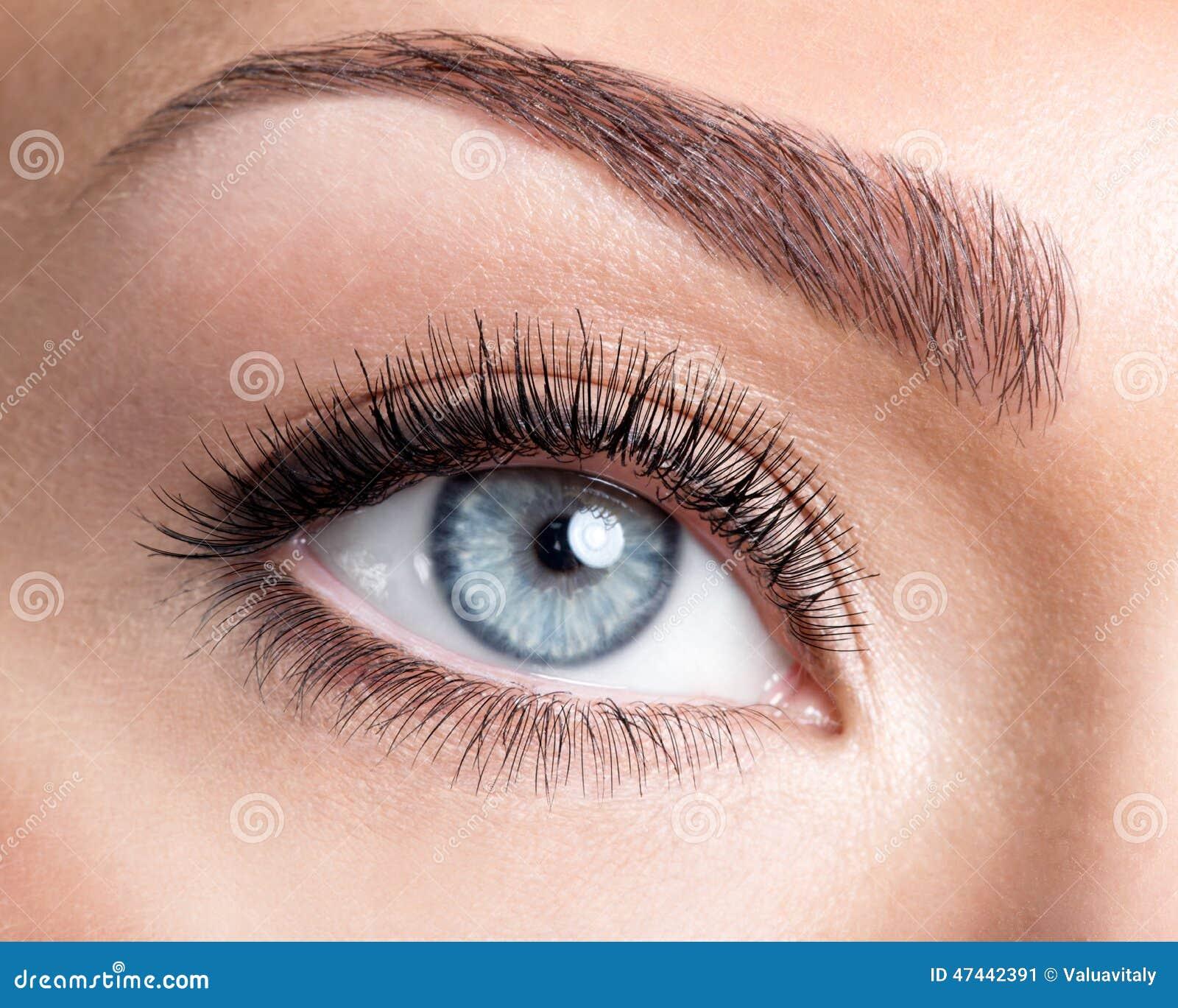 Occhio femminile di bellezza con i cigli falsi lunghi dell arricciatura