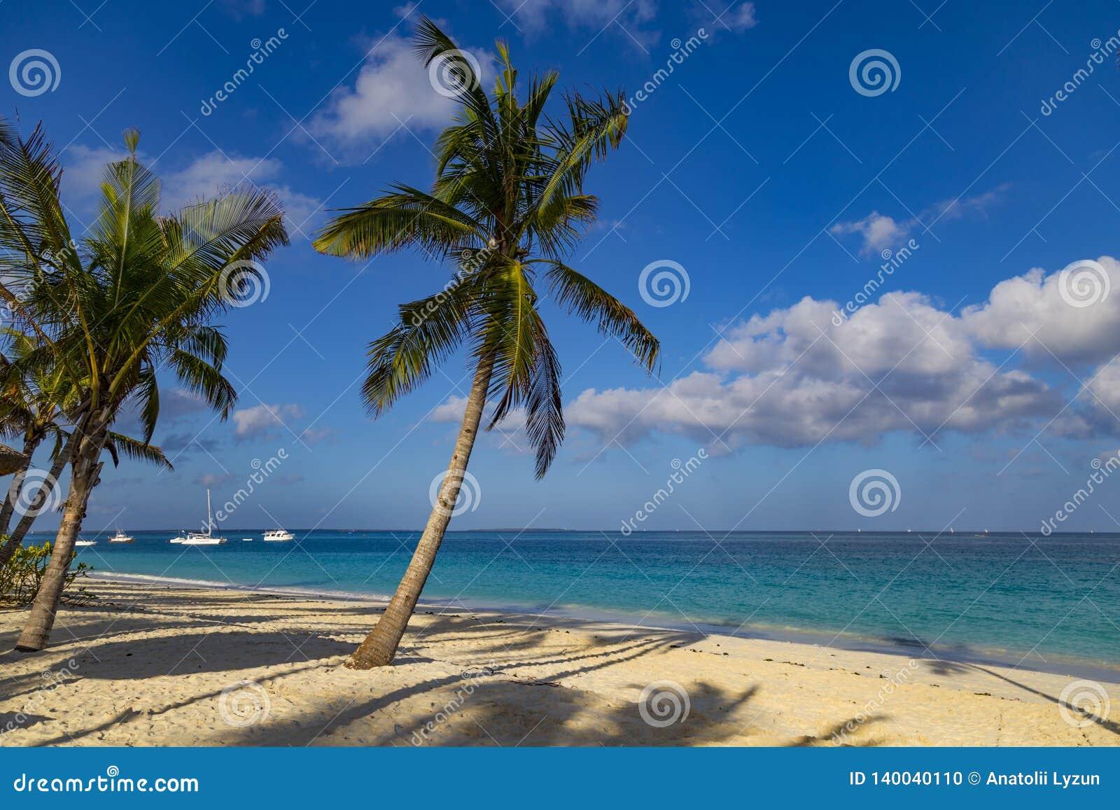 Oceaankust van het eiland van Zanzibar Dorp Kendwa tanzania afrika