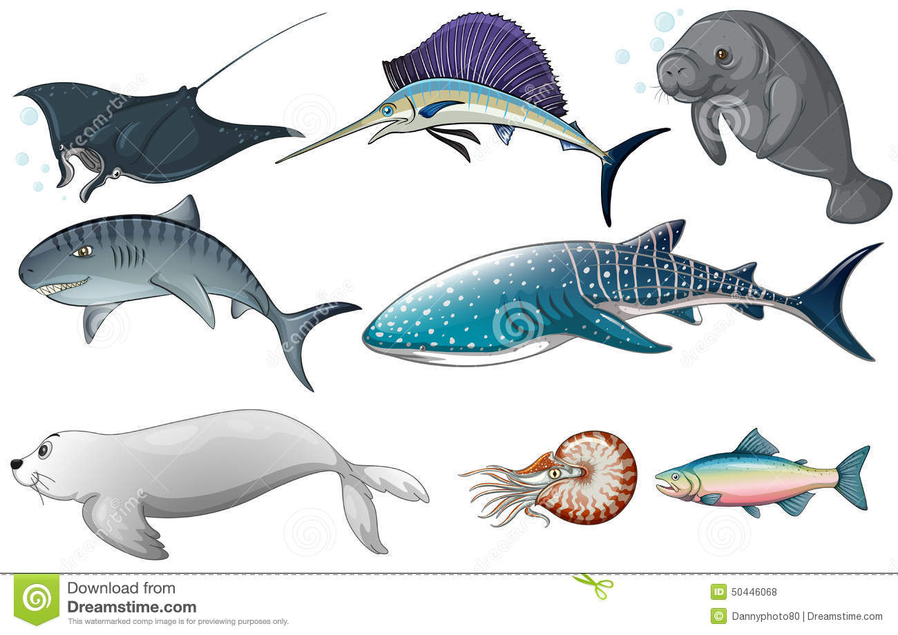 Illustration of different kind of ocean creatures.